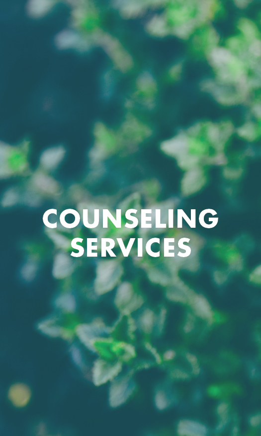 COUNSELING SERVICES   Our goal is to assist you in taking the next step to discover the obstacles that life has placed in your way, and find ways to not only cope but also overcome many of these issues. In a highly relaxed setting, our clinicians will provide you with a strong foundation using traditional as well as new and highly innovative techniques. We will not only meet you where you are at, but, when you are ready, also push you to set goals and achieve them so that you grow into the best version of yourself and live the life that you want to live.     COST: $140 Initial Intake and $105 per session after