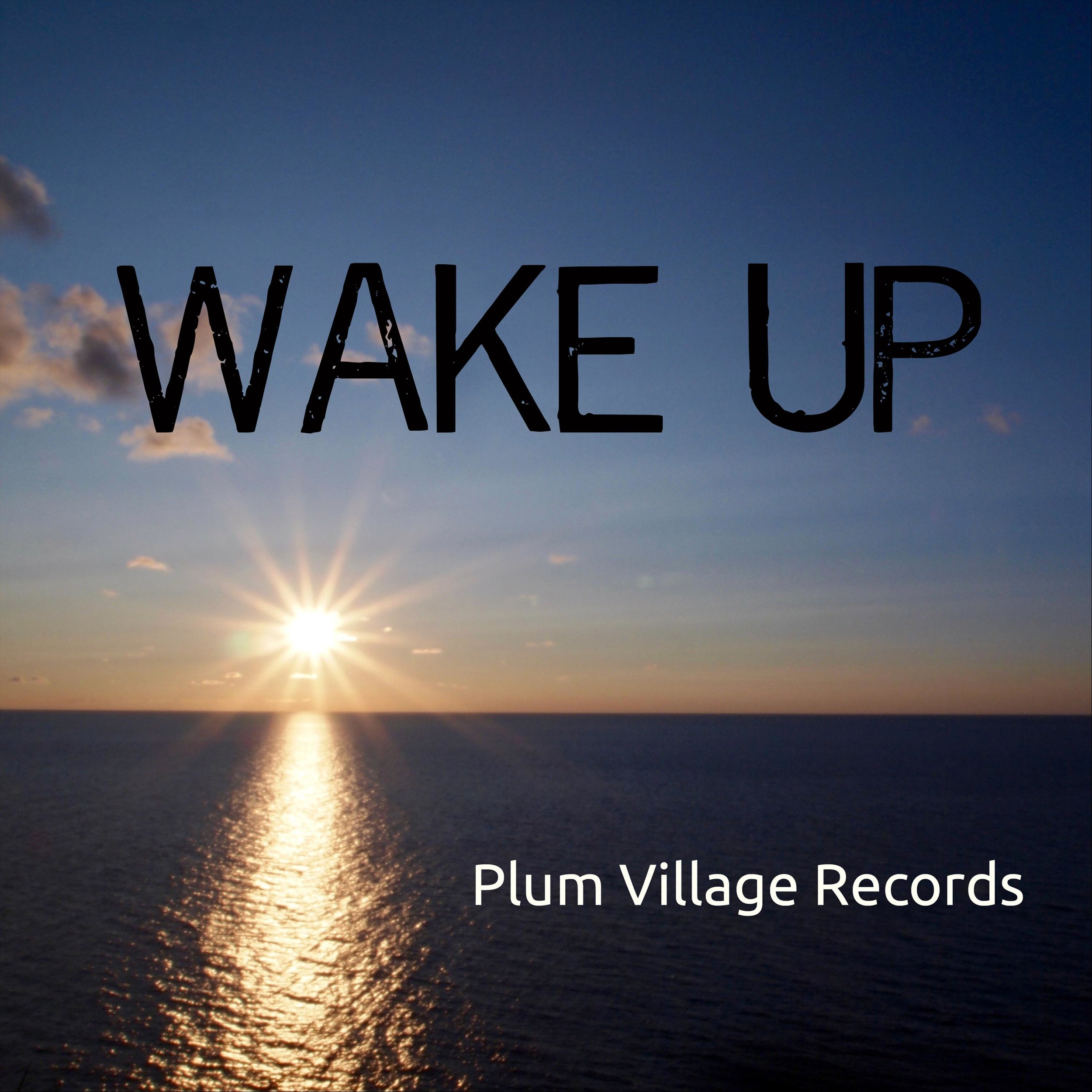 """Wake Up - Wake Up is a collection of songs inspired by the 2011 Wake Up Tour in the US. Titles include """"Unborn and Indestructible,"""" """"This Is It!"""","""