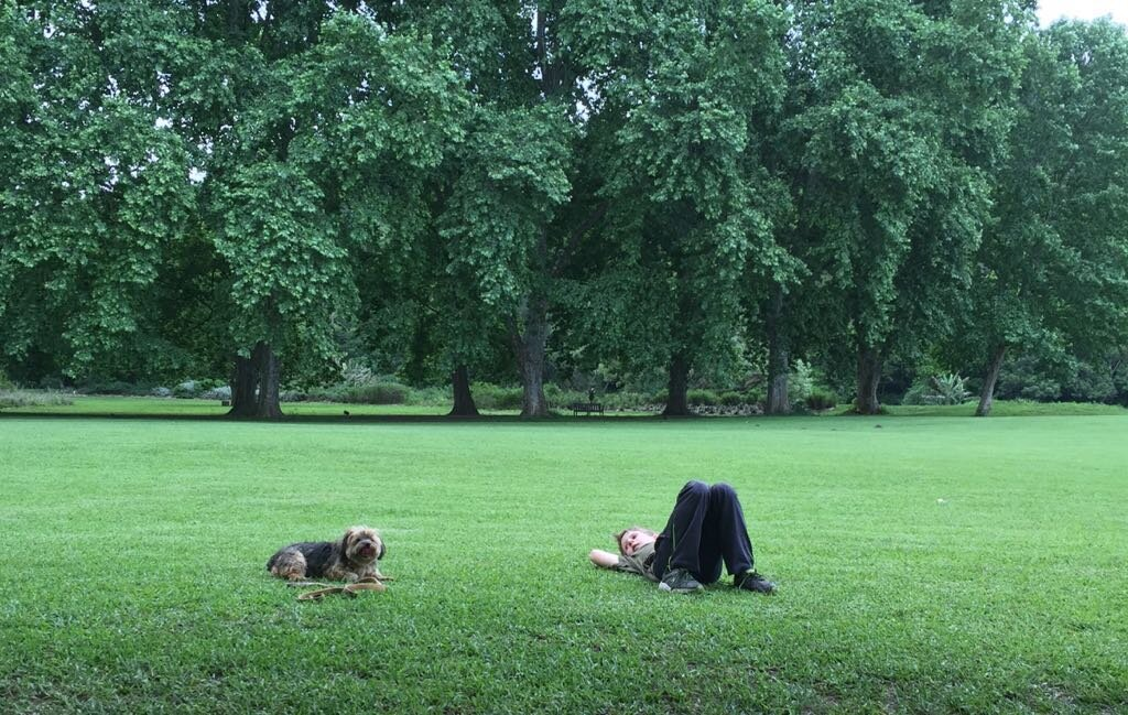 Child Laying on Grass with Dog (Photo from Robert at Jive Media).jpeg