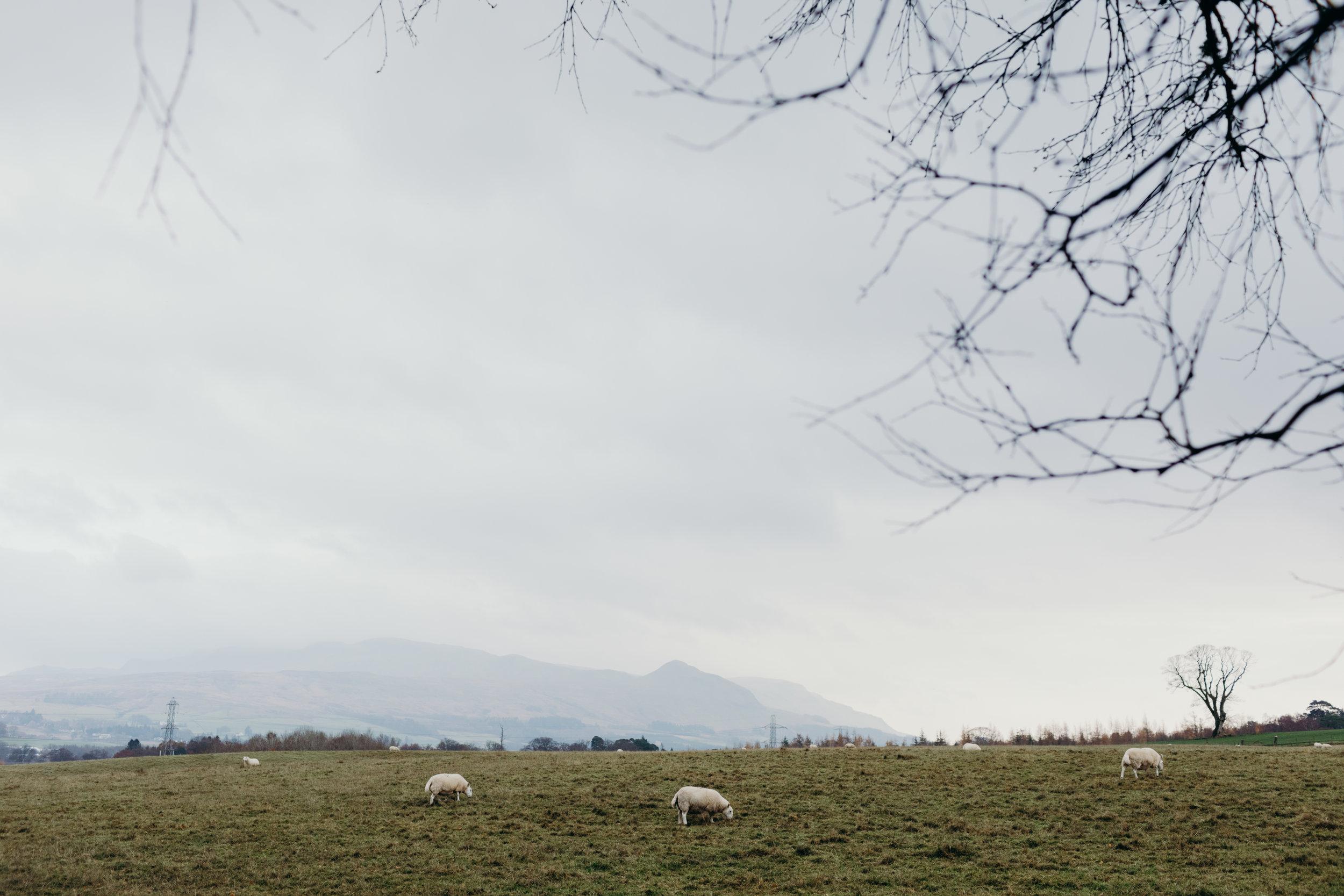 Scotland_Blog_008.JPG