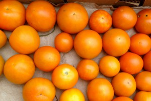 'Jaune Flamme' Tomato