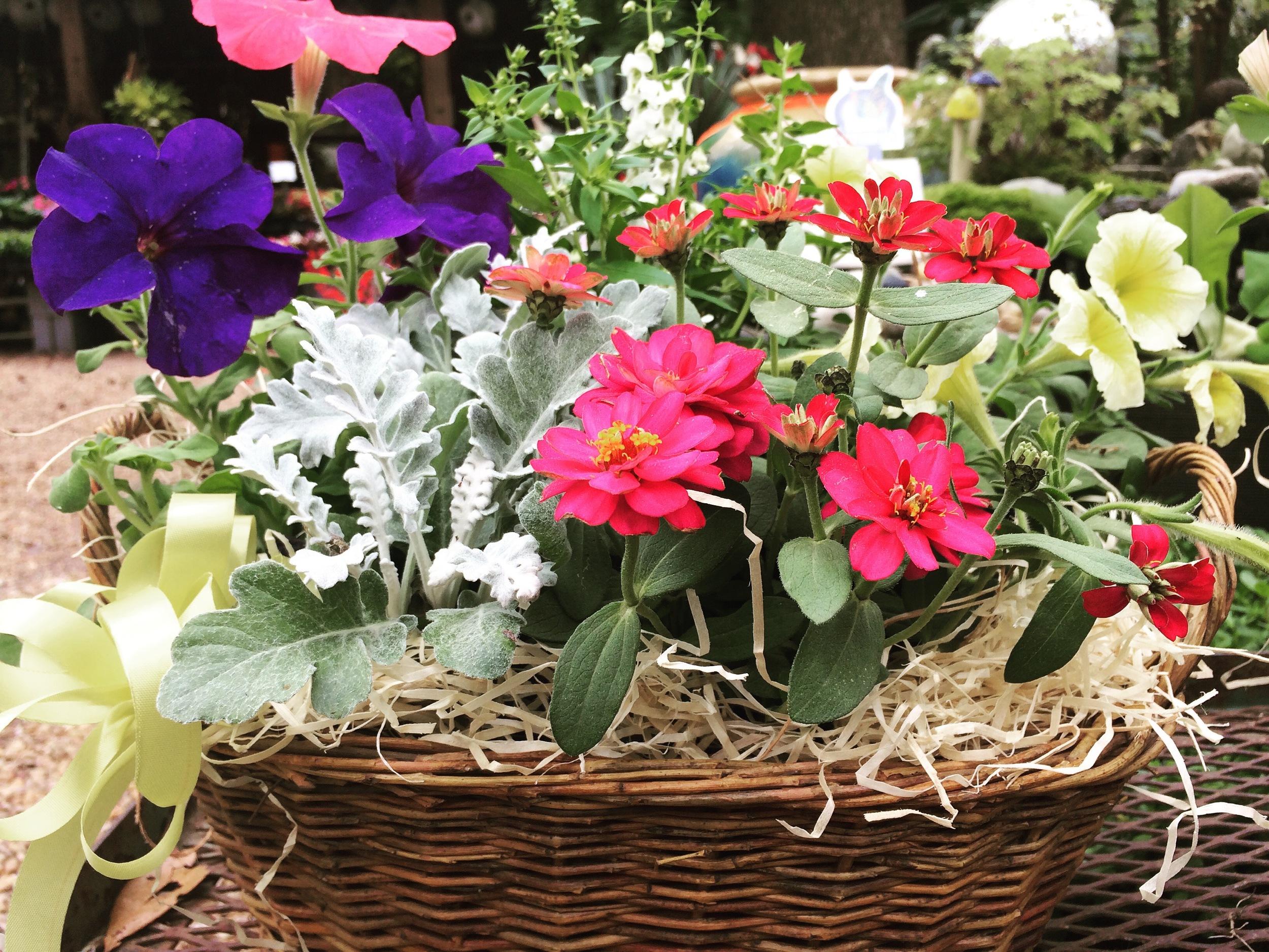 Flower & Herb Baskets