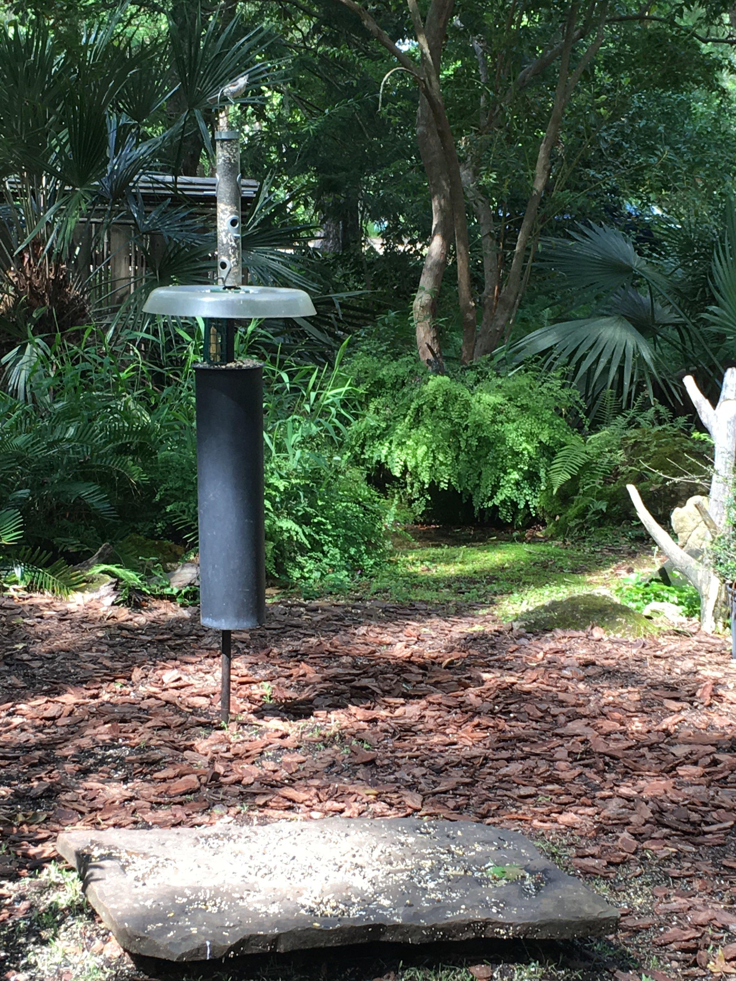 Bird Garden 1.jpg