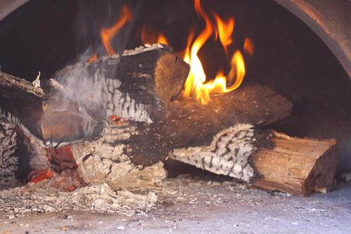 wood-burning-inside-oven