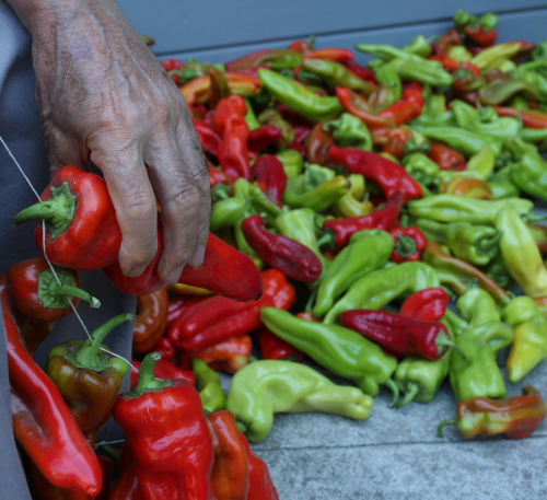 Dad Threading peppers