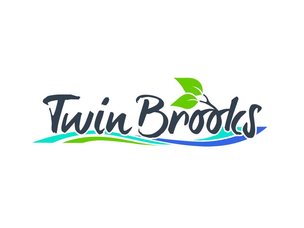 Dattcom_TwinBrooks.jpg