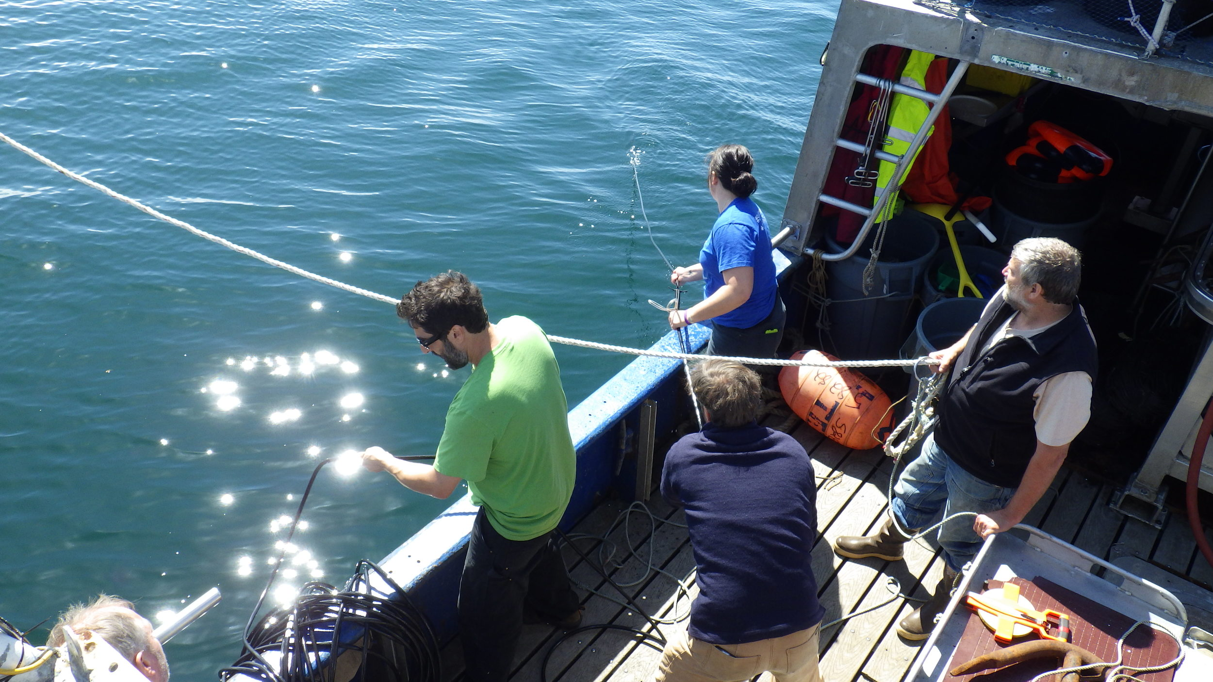 Skipper Stephen Rhoades of the Marilyn J (left), University of Alaska BLaST student Kate Hauch, Dr. Thomas Gordon (foreground), and Alaska Longline Fishermen's Association program coordinator Dan Falvey (right) coordinate the release of hydrophone arrays for tracking sperm whales that strip fish from commercial fishing gear. (Photo Provided by Anna Wietelmann)