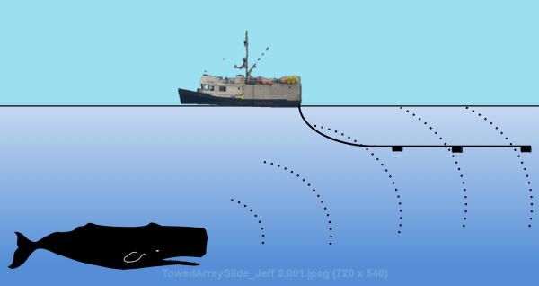 towed+array.png