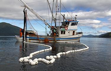 Image: seafoodsource.com