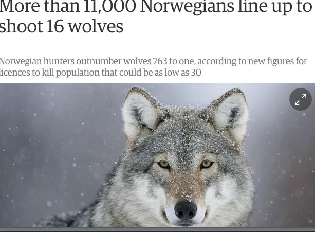 Faksimile fra The Guardian