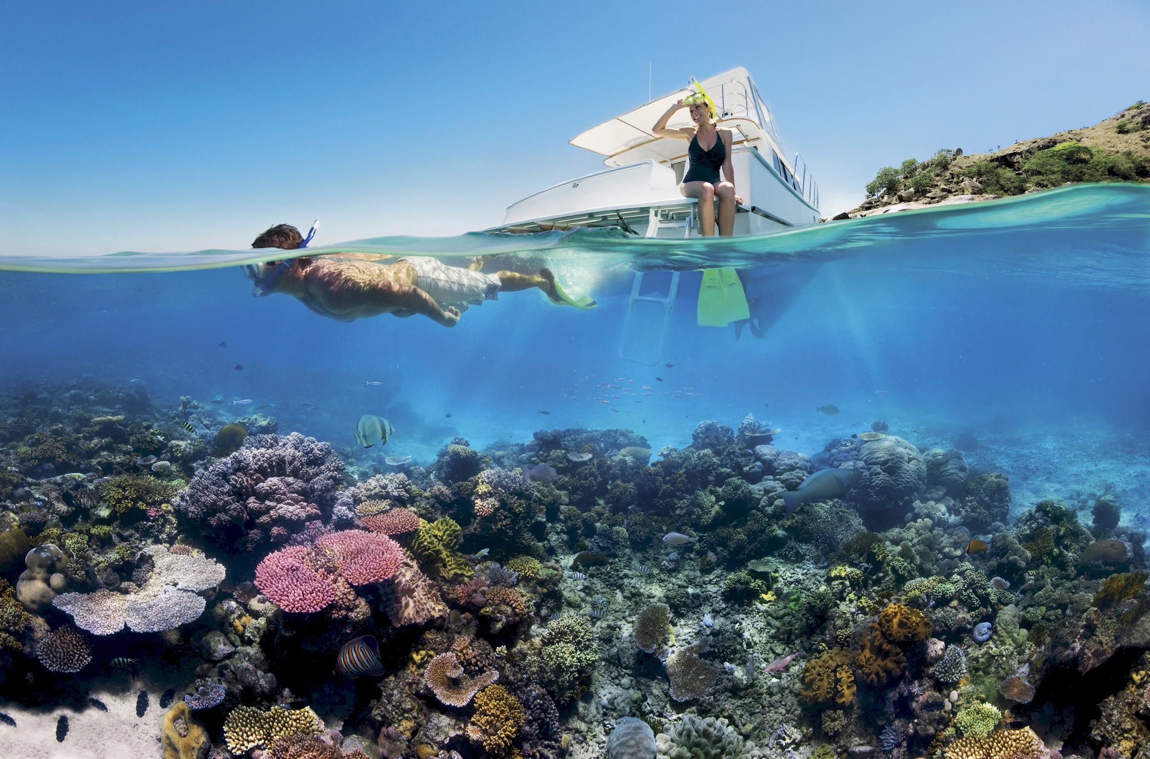 Det er lov å la seg friste av dette...                       Foto: Australiareiser