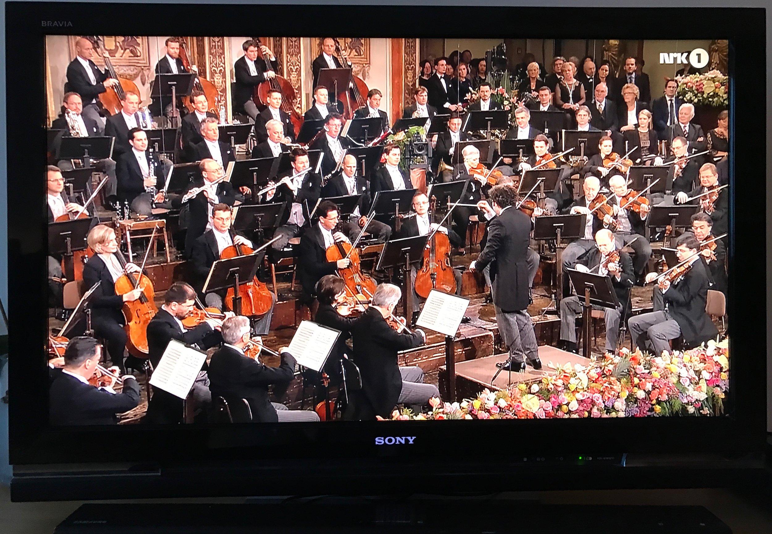 Vil du oppleve nyttårskonserten i Wien live - eller nøye deg med, som her, å se den på TV?