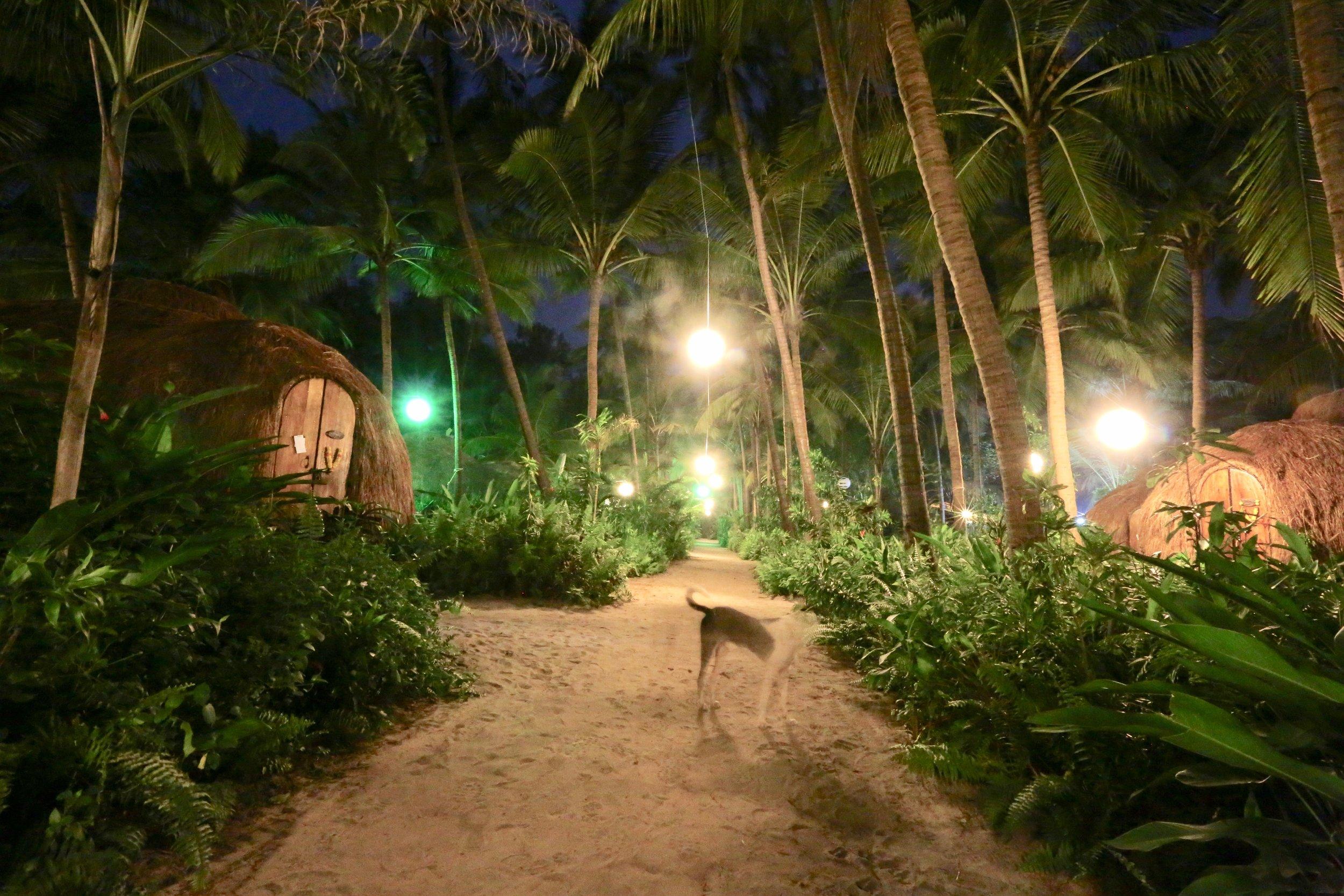 Øko-lodgen Yam Yum er en av de fineste jeg noen gang har besøkt. Nå er det din tur.