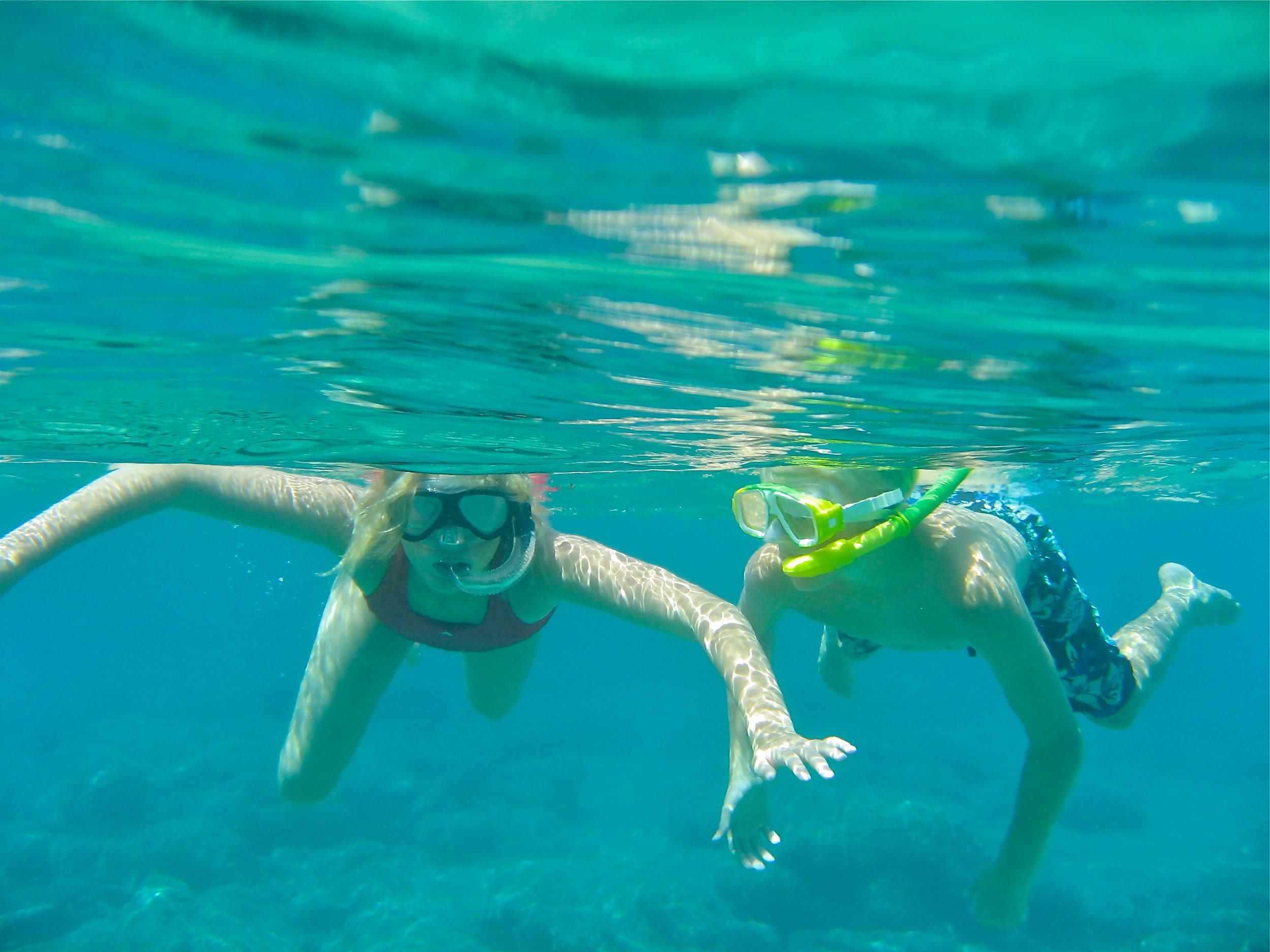 Har du latt barna undersøke livet under vann? Odd Roar Lange
