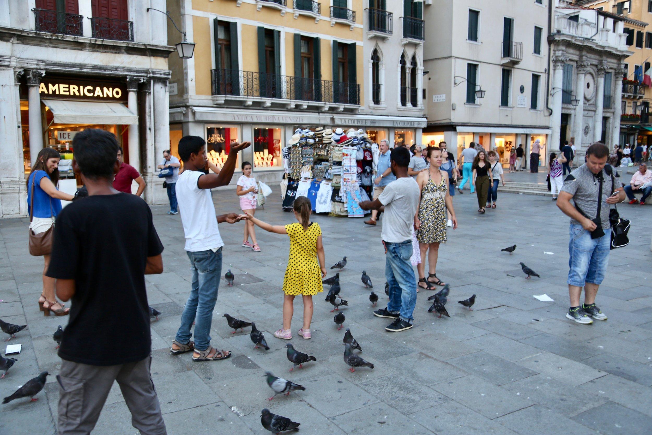 Duenes herre: Når du lures til å mate duene (fuglemating er i seg selv er ulovlig mange steder) så er det også lett å bli lurt av lommetyver. Foto: Odd Roar Lange