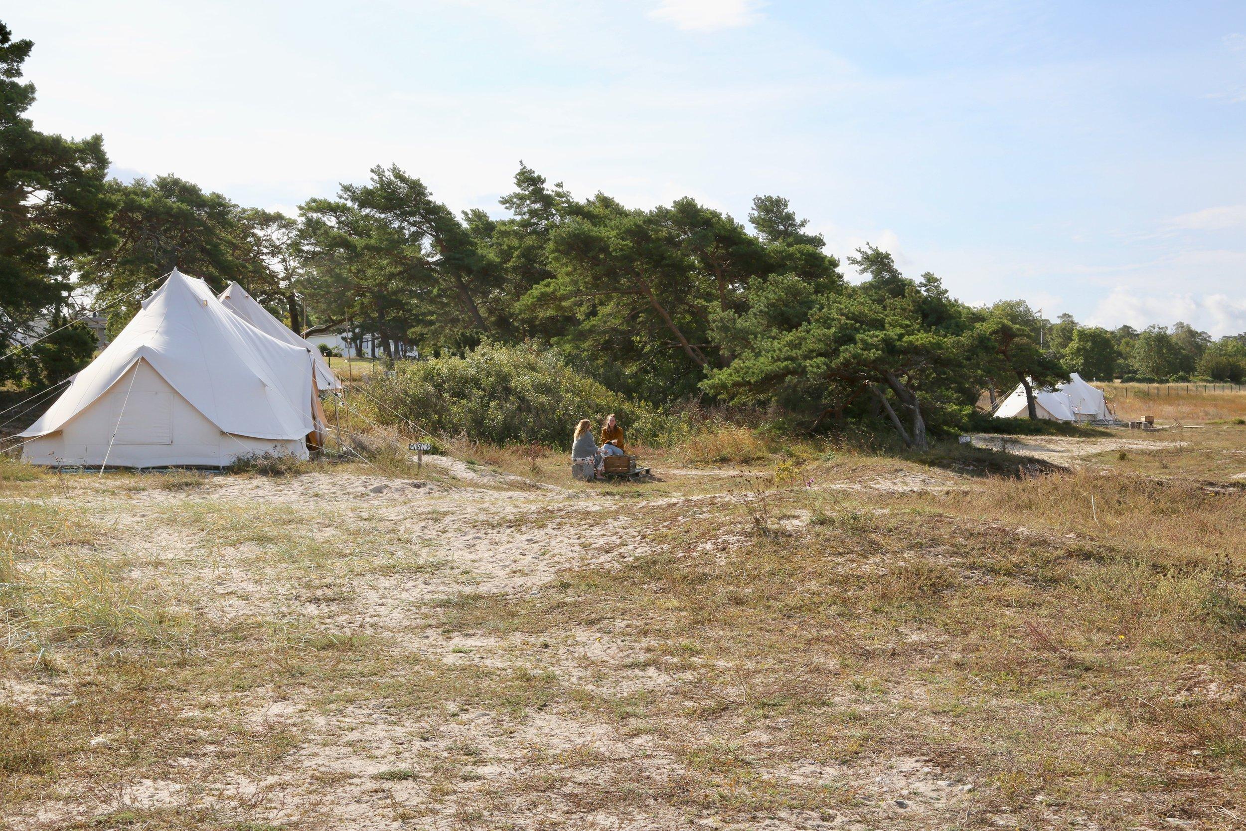 Surflogiet på Tofta på Gotland har luksustelt på stranden. Foto: Odd Roar Lange
