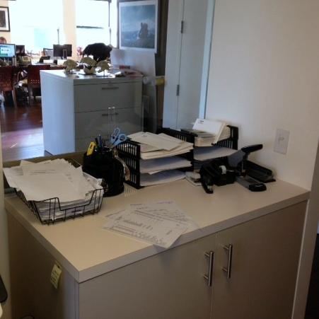 Panthera Printer Desk - Before_Square.jpg