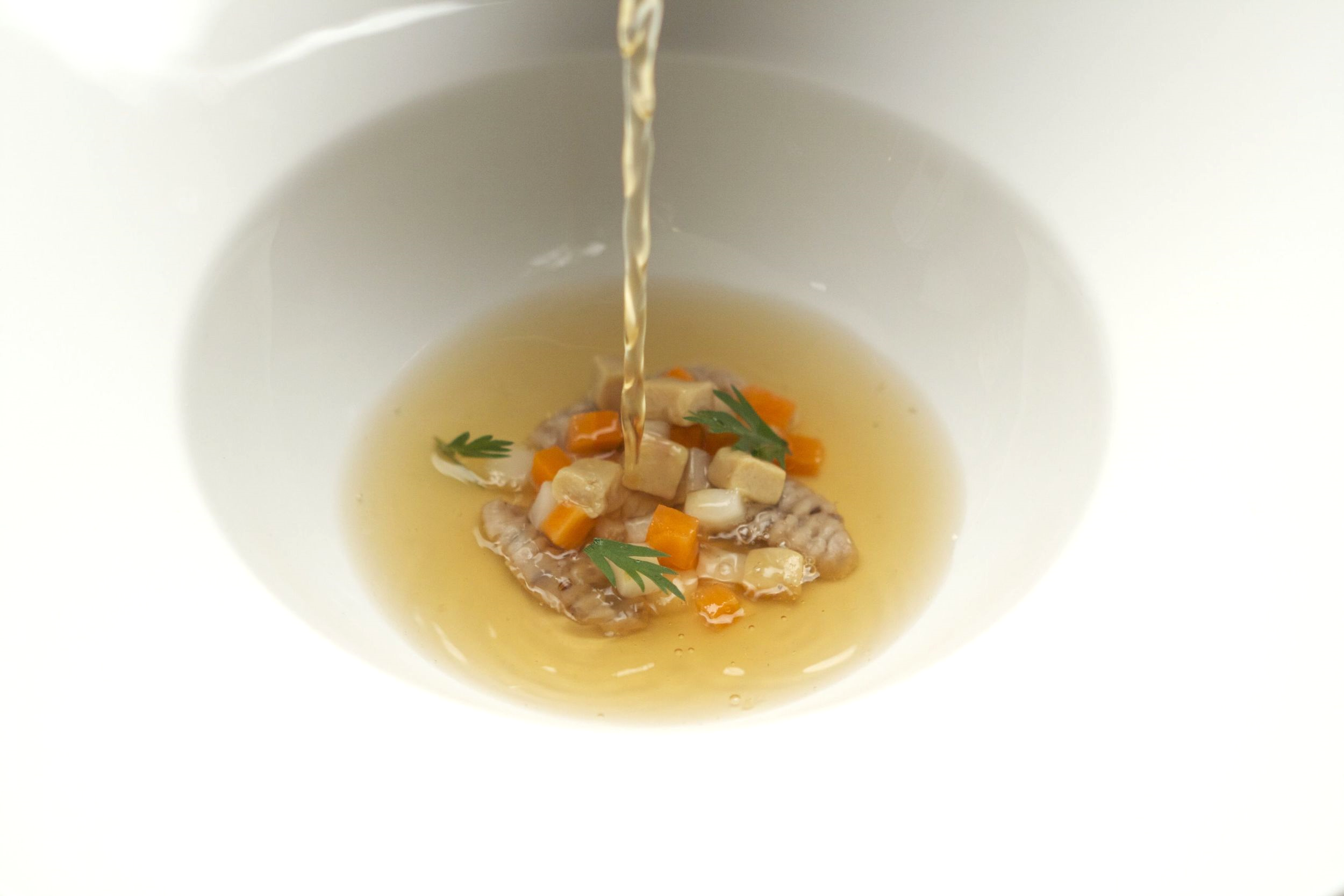 game bird consomme