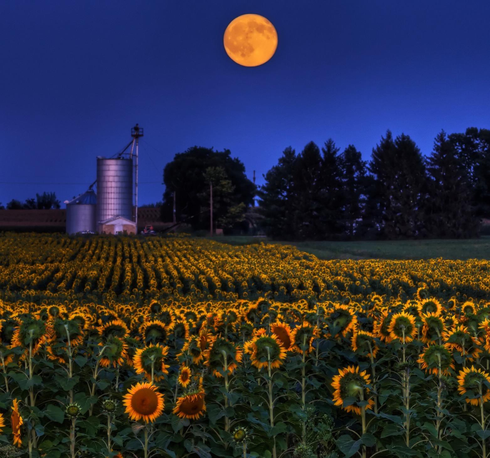 Photo by @jimcrottyphotog in Yellow Springs, Ohio