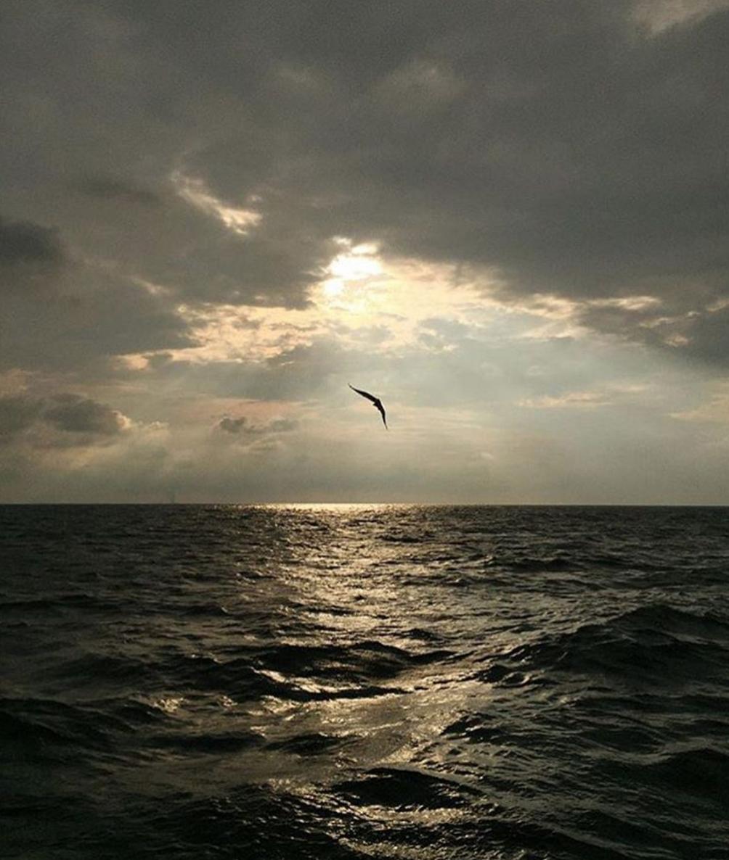 Photo by @chaseeagleson near Catawba Island on Lake Erie