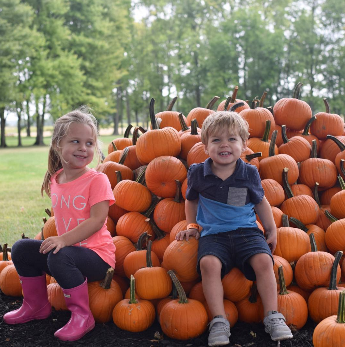 Photo by @littleadvcbus at Lehner's Pumpkin Farm in Radnor, Ohio