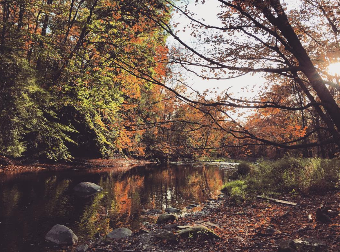 Photo by @whimseycraft_ at Tinker`s Creek State Nature in Aurora, Ohio