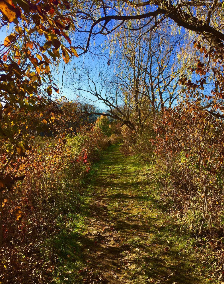 Photo by @tensaicl8 at Tinkers Creek State Park in Aurora, Ohio