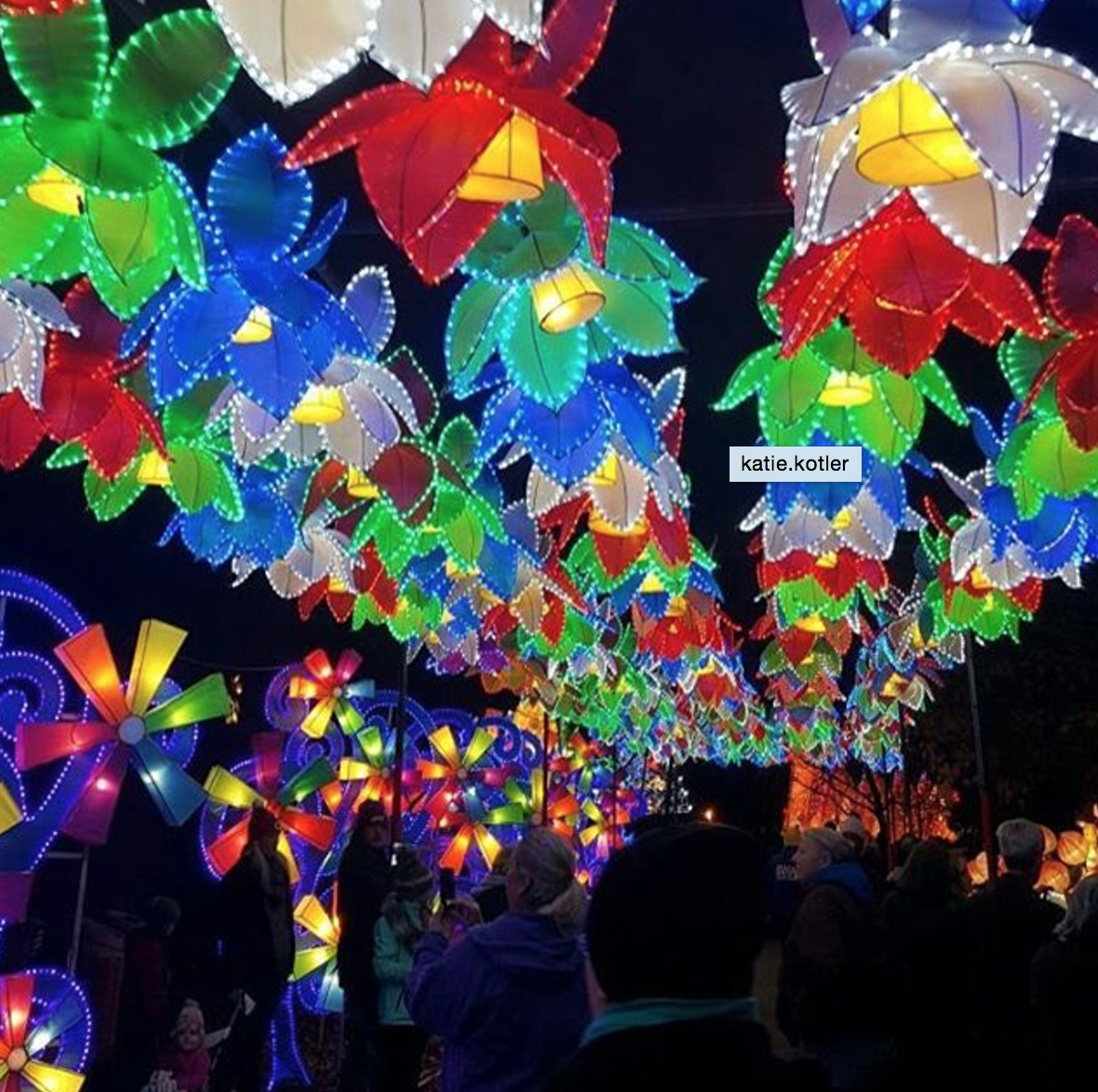 Photo by @katie.kotler at the Ohio Chinese Lantern Festival in Columbus, Ohio