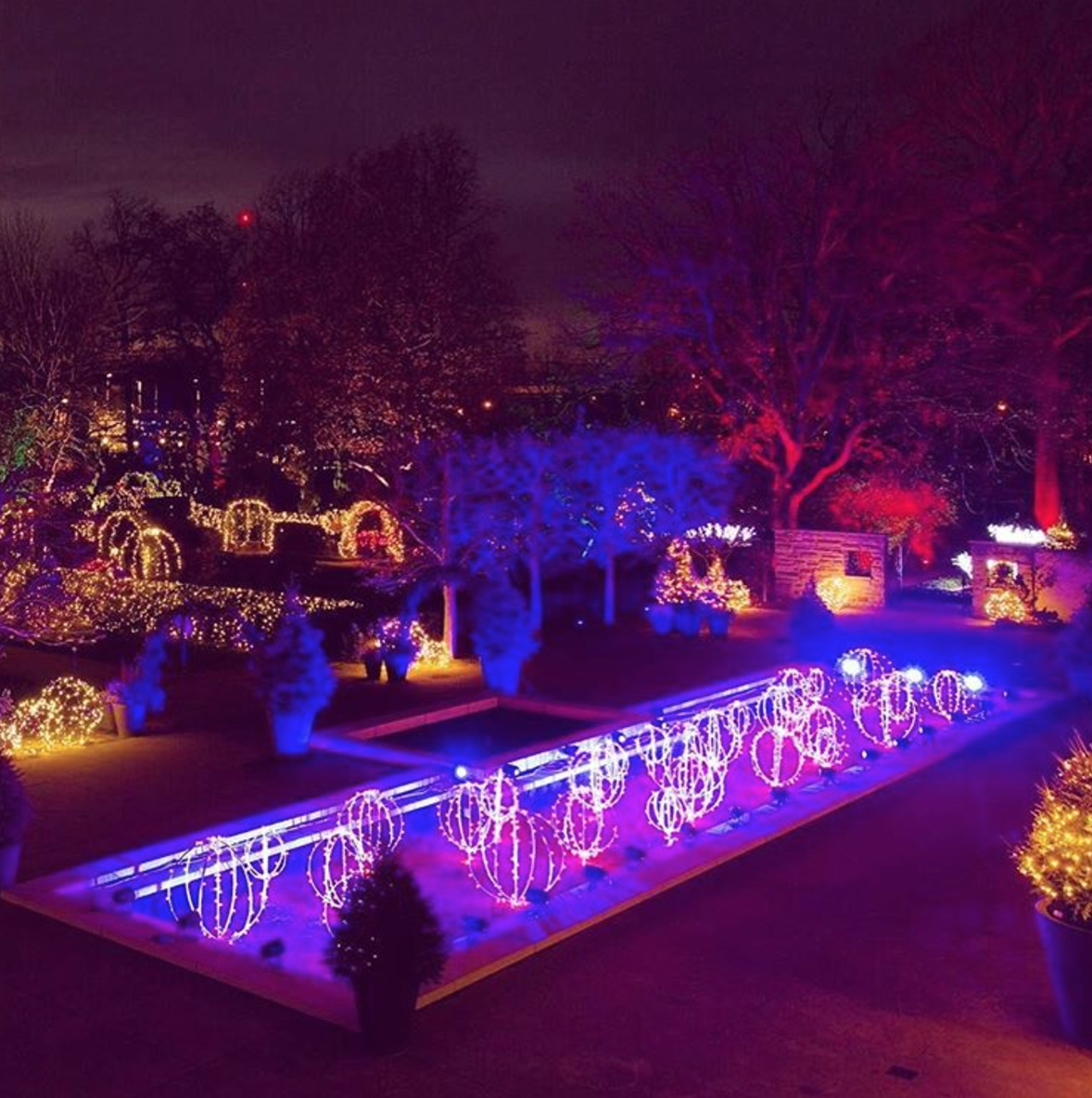 Photo by @clegarden at Glow at the Cleveland Botanical Garden in Cleveland, Ohio