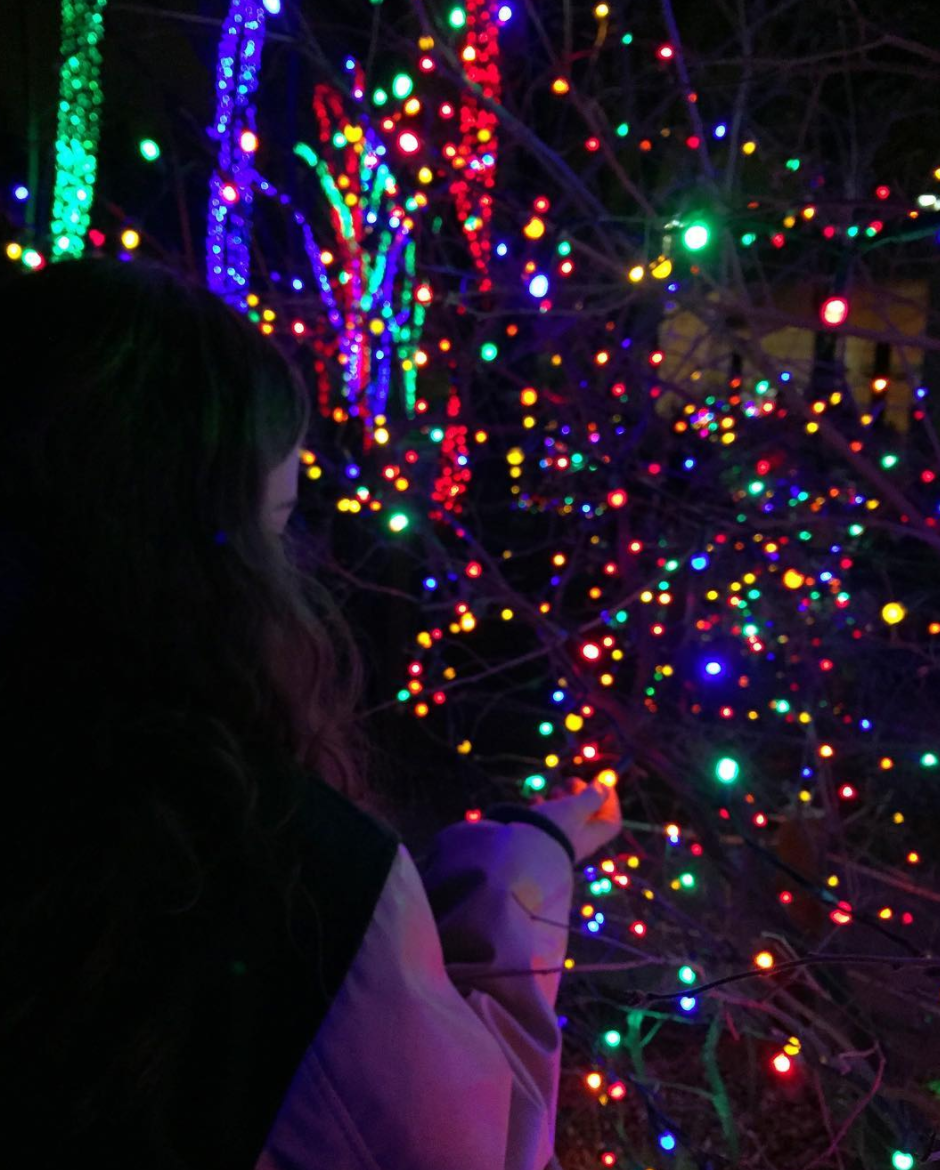 Photo by @eva_rudow at Lights Before Christmas at the Toledo Zoo in Toledo, Ohio