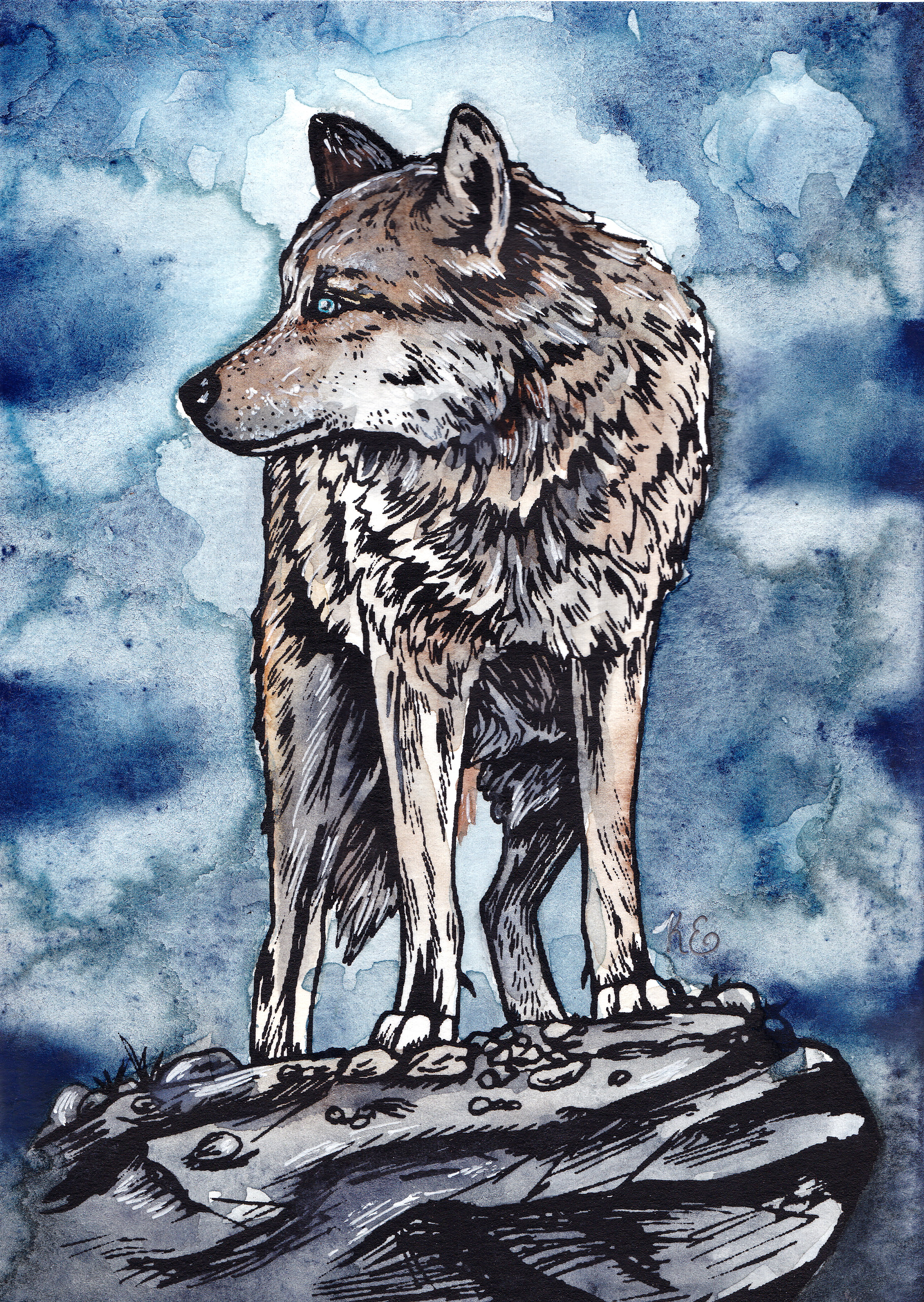 Fierce wolf watercolored 5 x 7.jpg