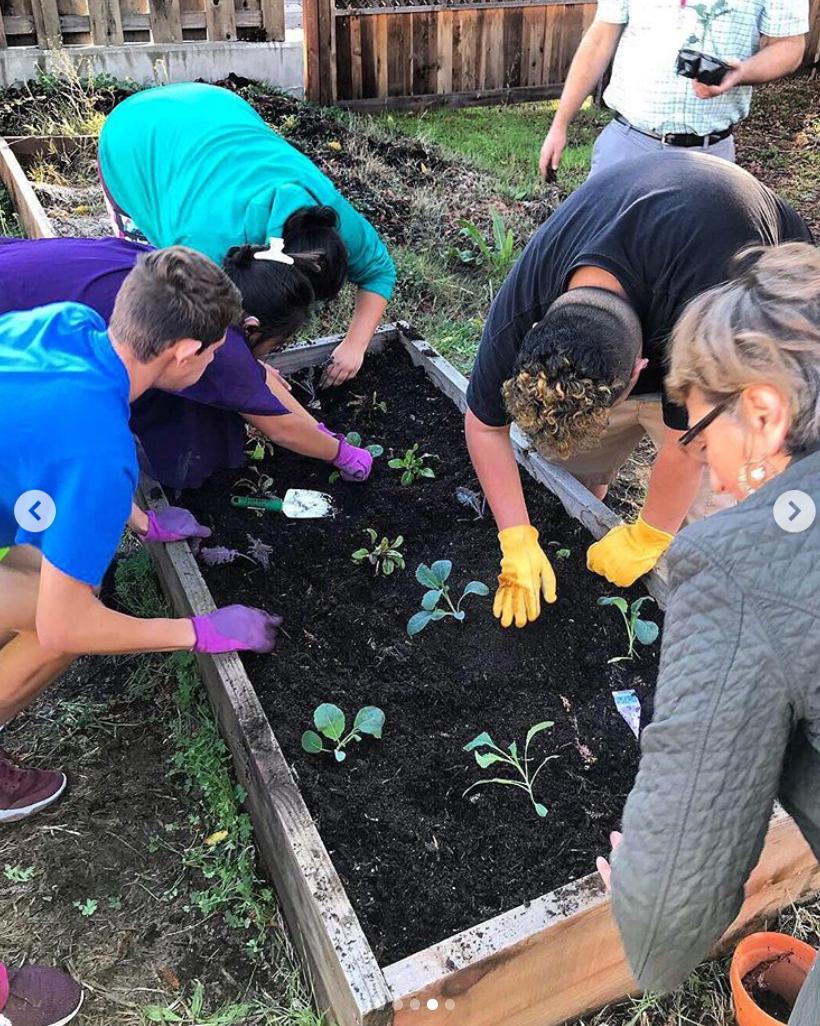 volunteer garden schs.jpg