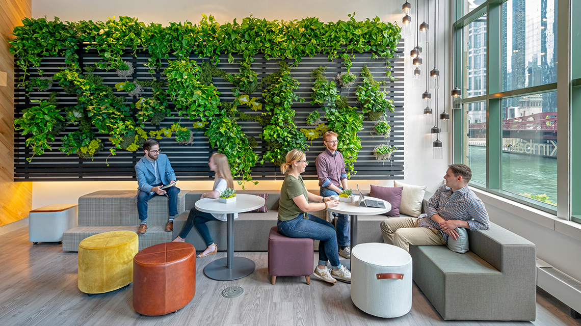 Image result for rattan furniture with biophilic wall