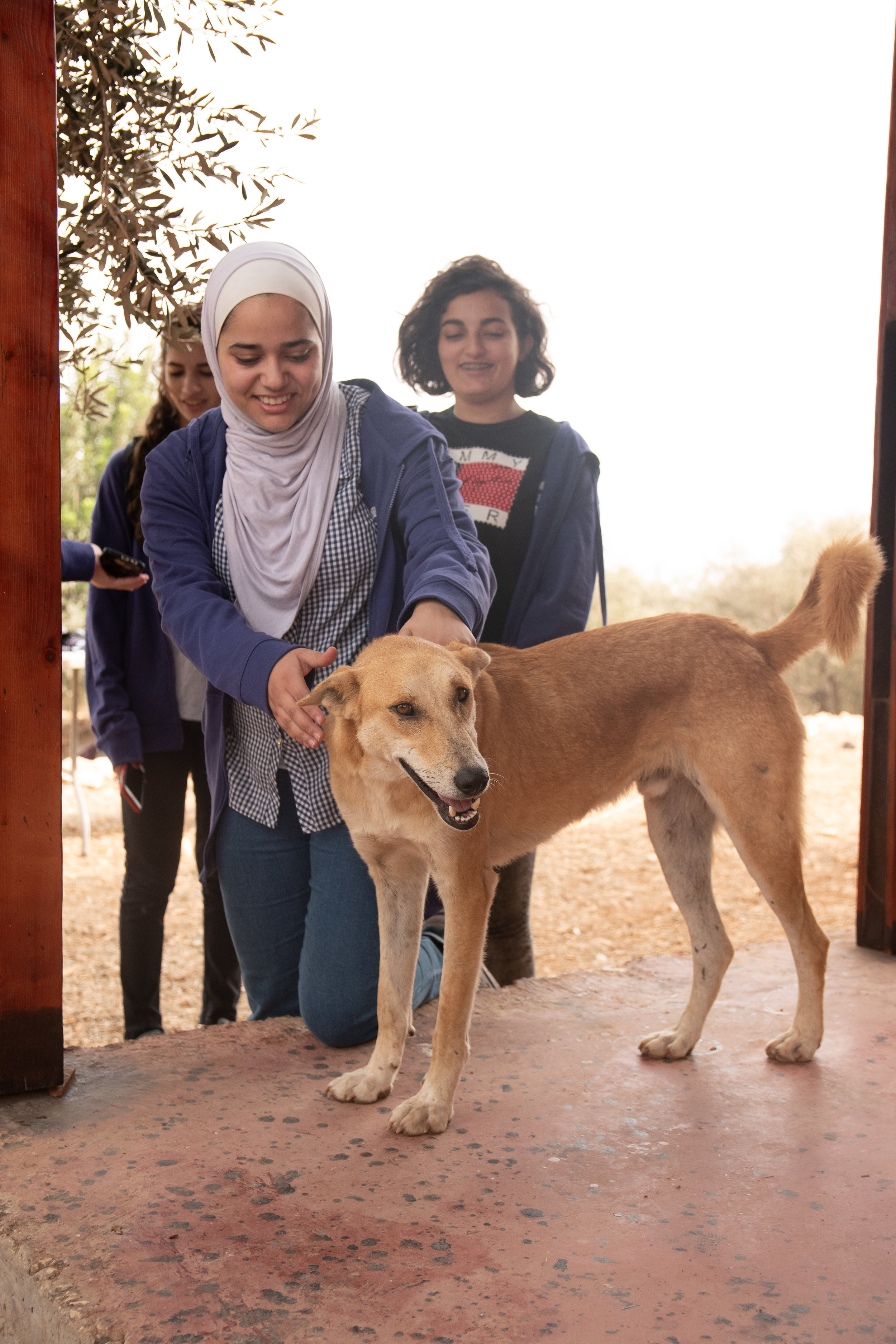 This girl had never touched a dog before so Wallad tried to be as unintimidating as possible