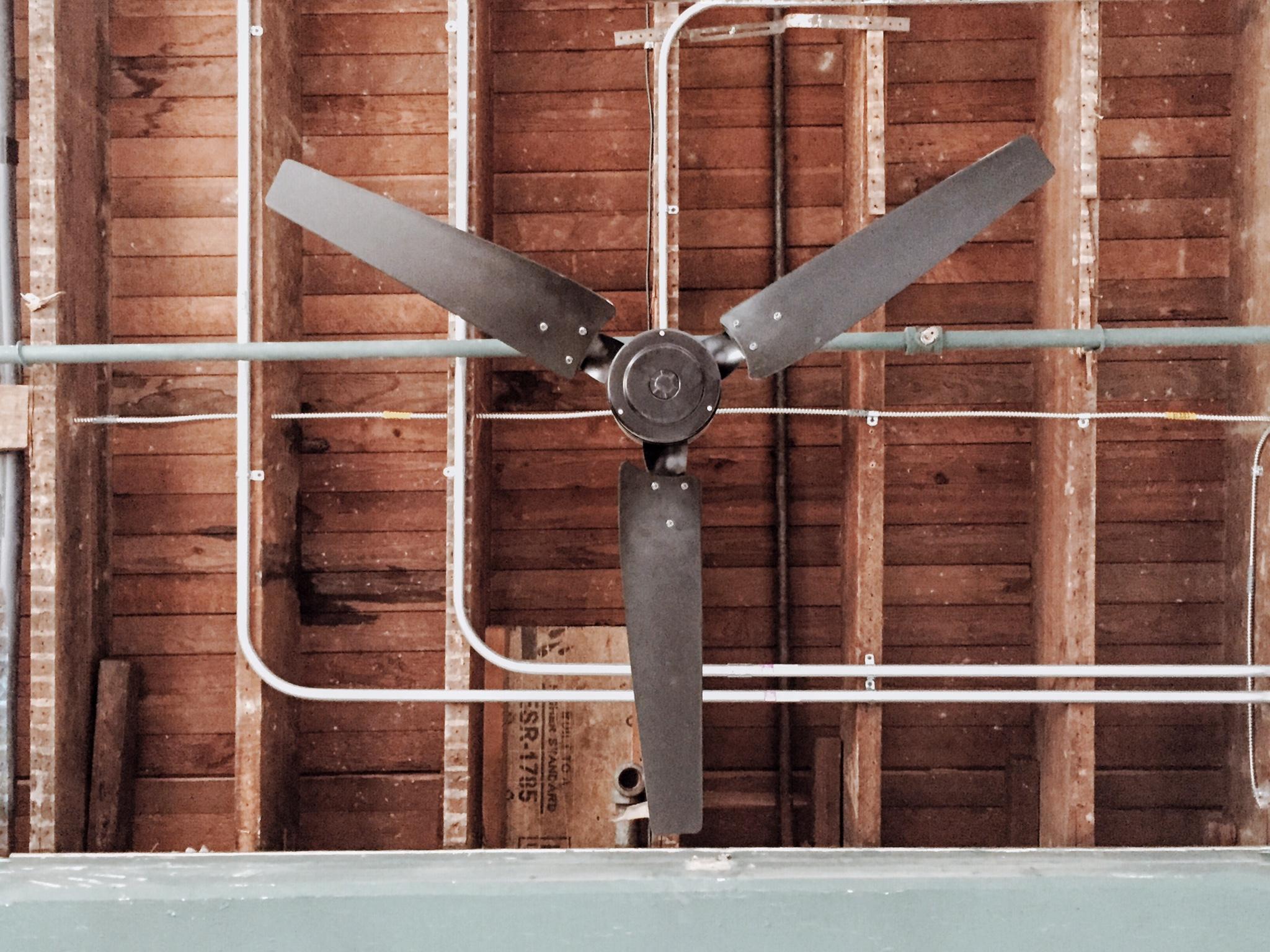 Loft 202 Fan.JPG