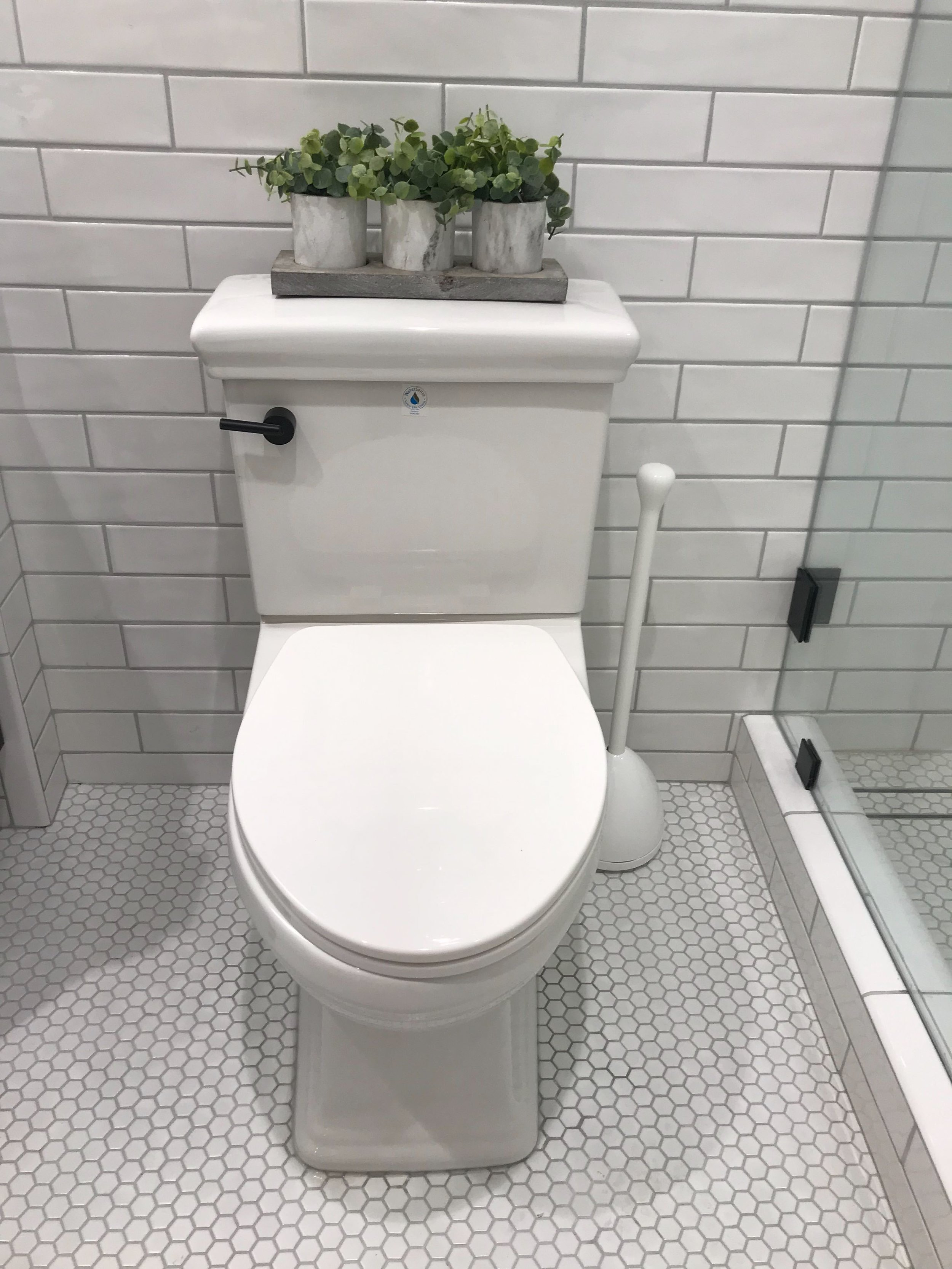 203 toilet.jpg