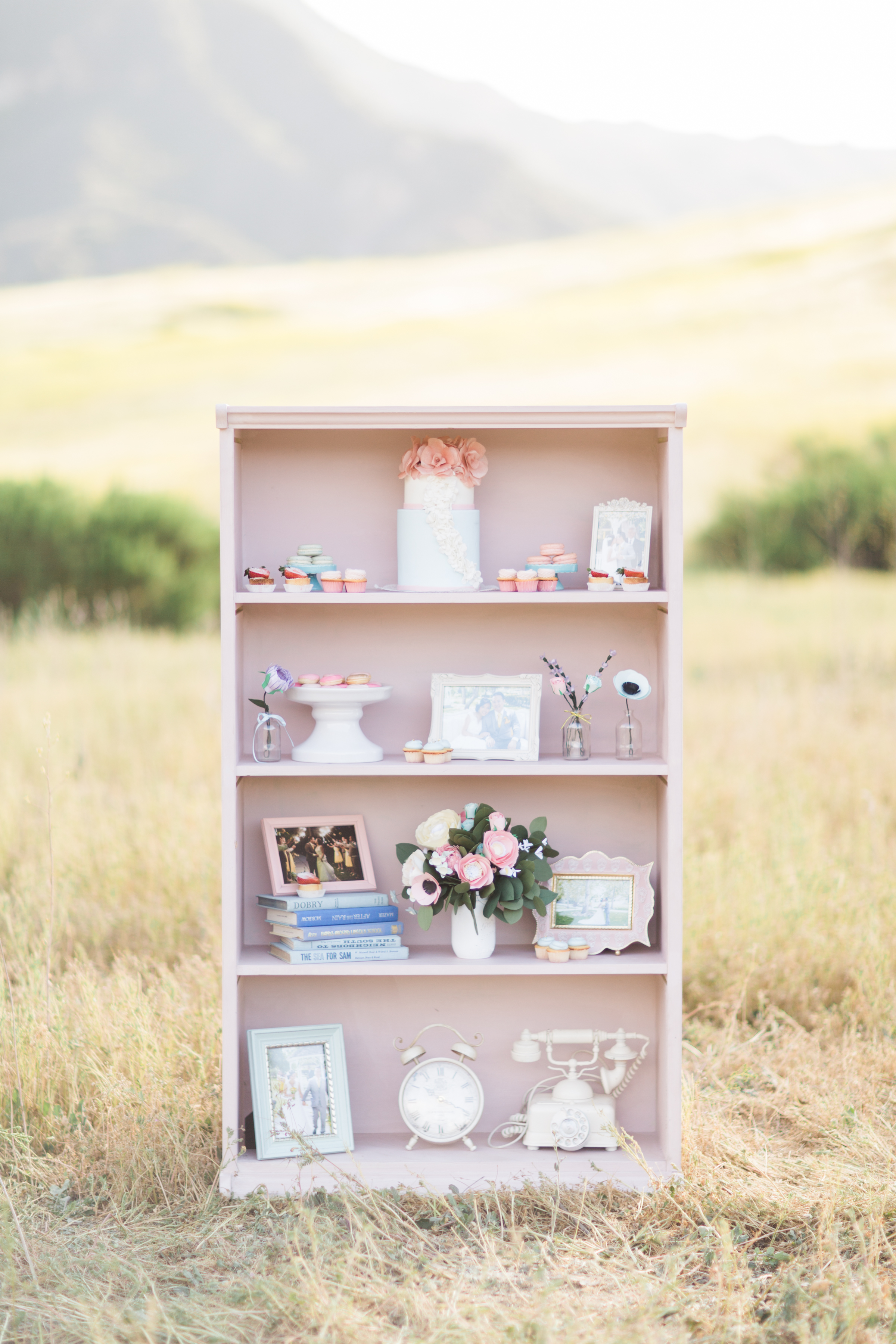 Pink Bookcase - (1)