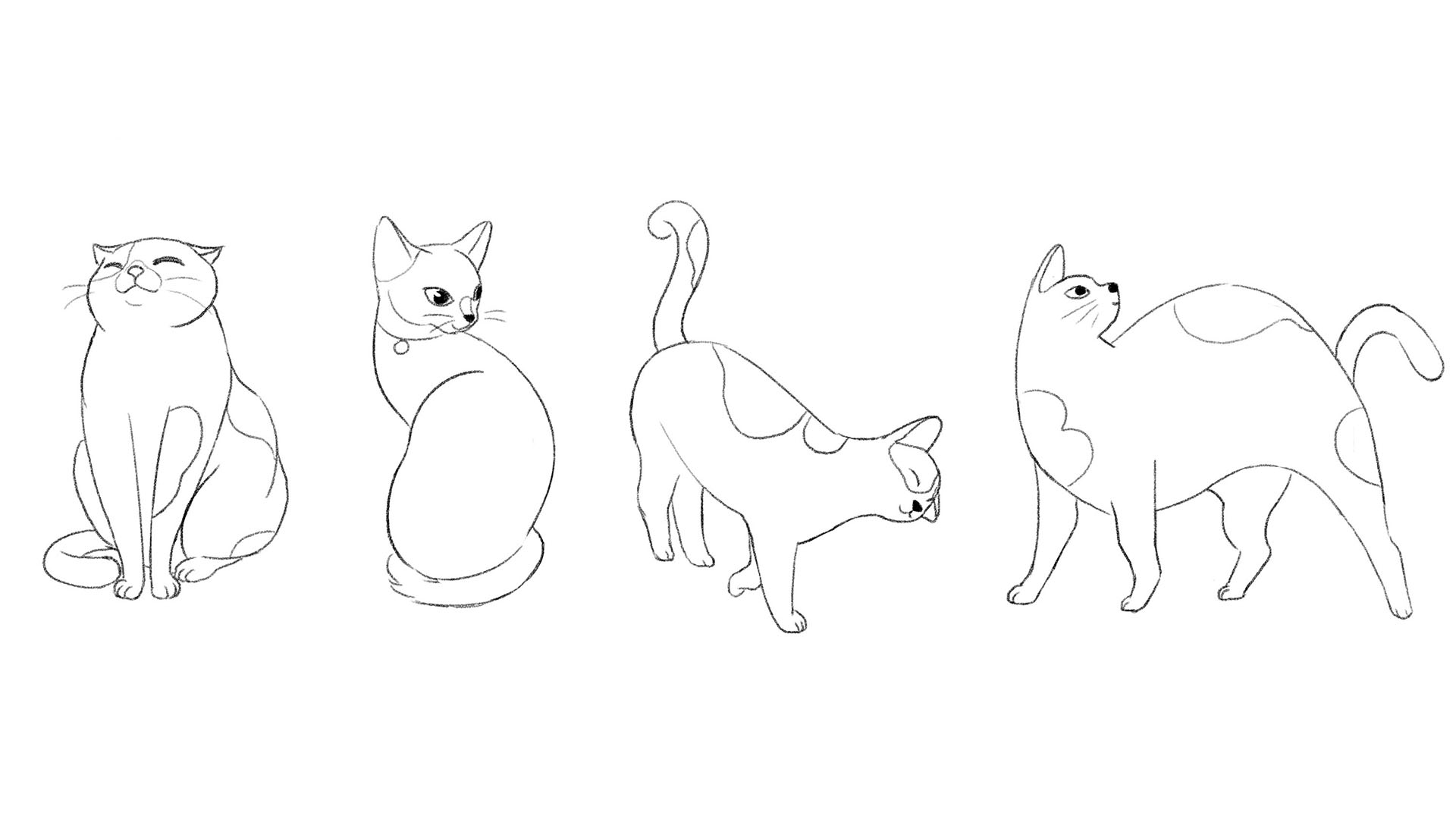 Chickflia_cat sketch_v01.jpg