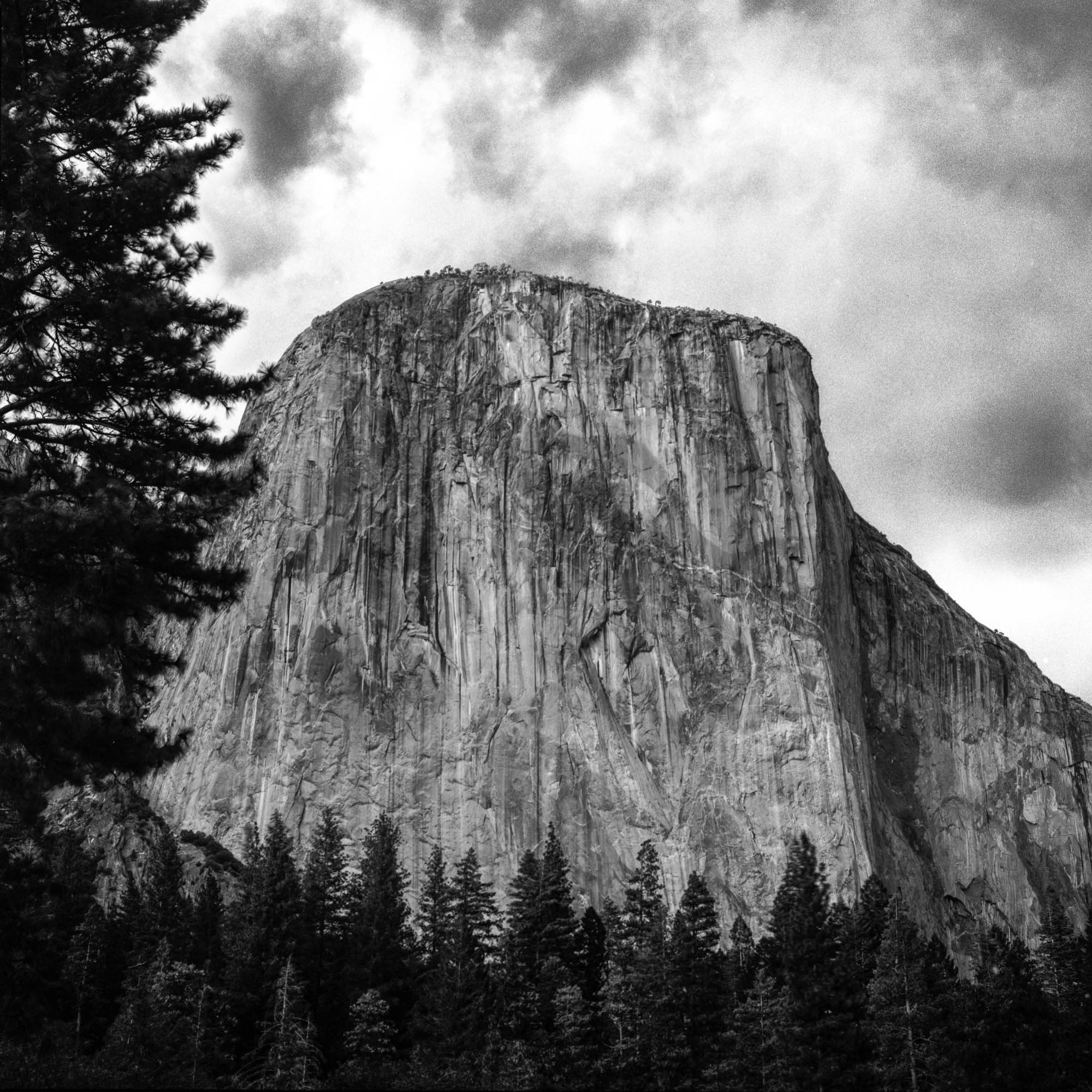 El Capitan, Photographed on Tri-X Film.