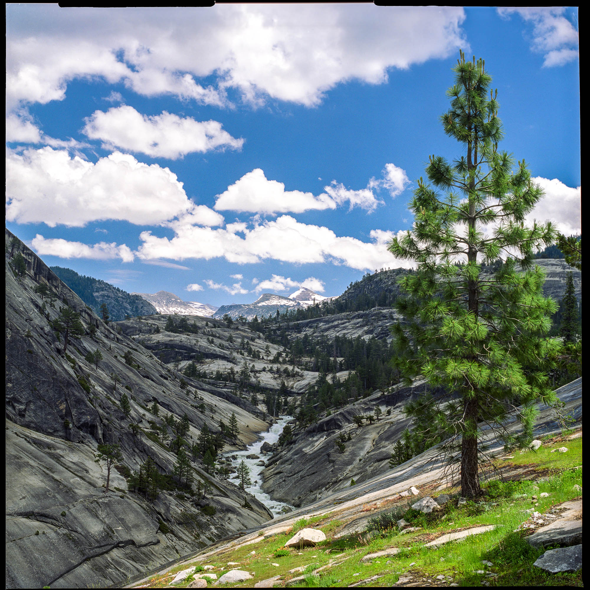 Merced River Valley - Yosemite National Park