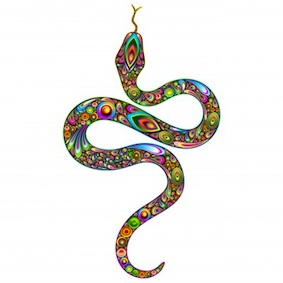 e-liquid-rainbow-serpent-01.jpg