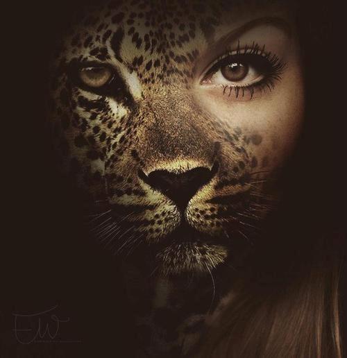 0e70f21020050a824ff7896d45972a02--cat-face-tiger-face.jpg