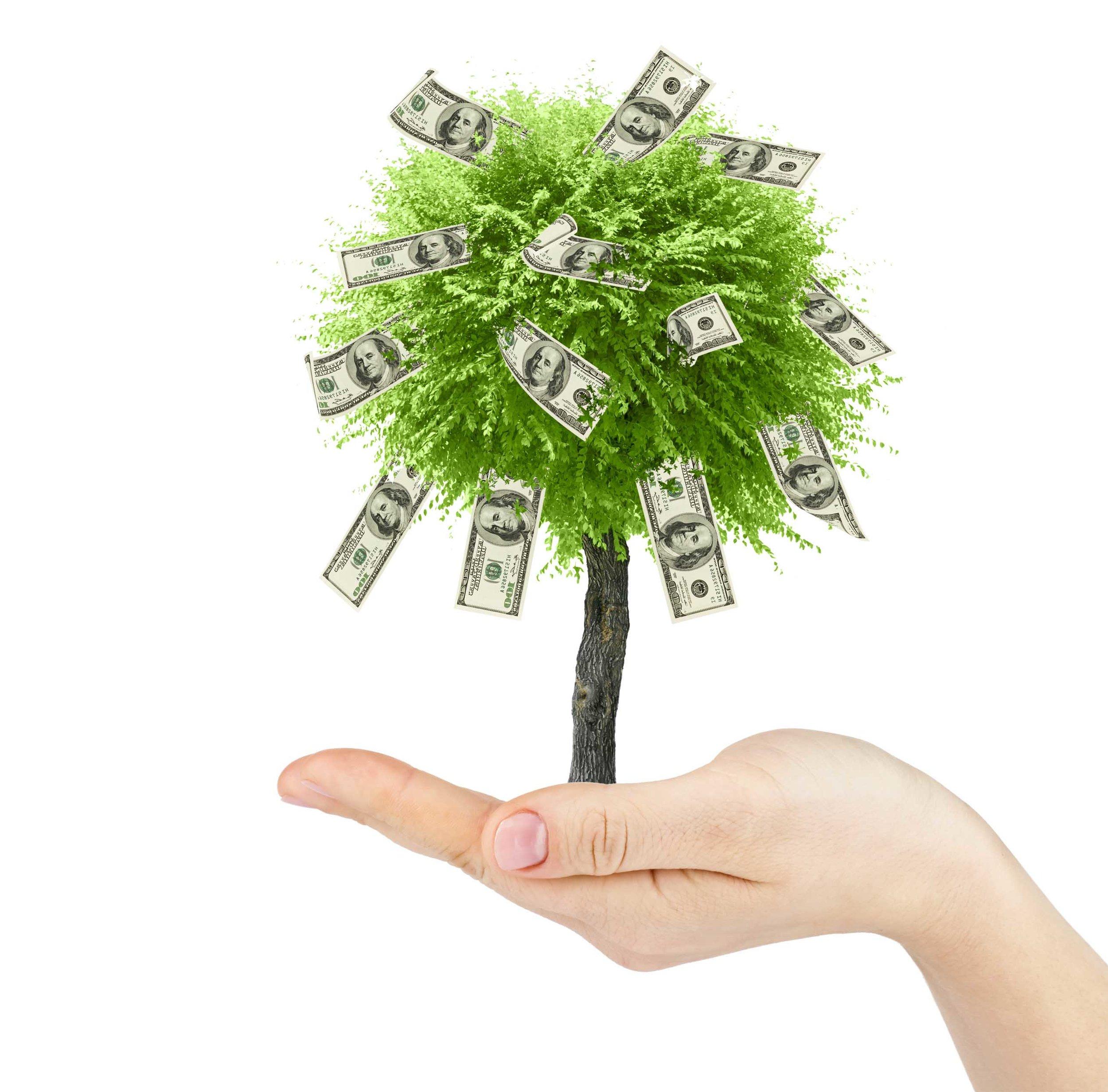 graphic-tree-in-hand-flipped-horizontal.jpg