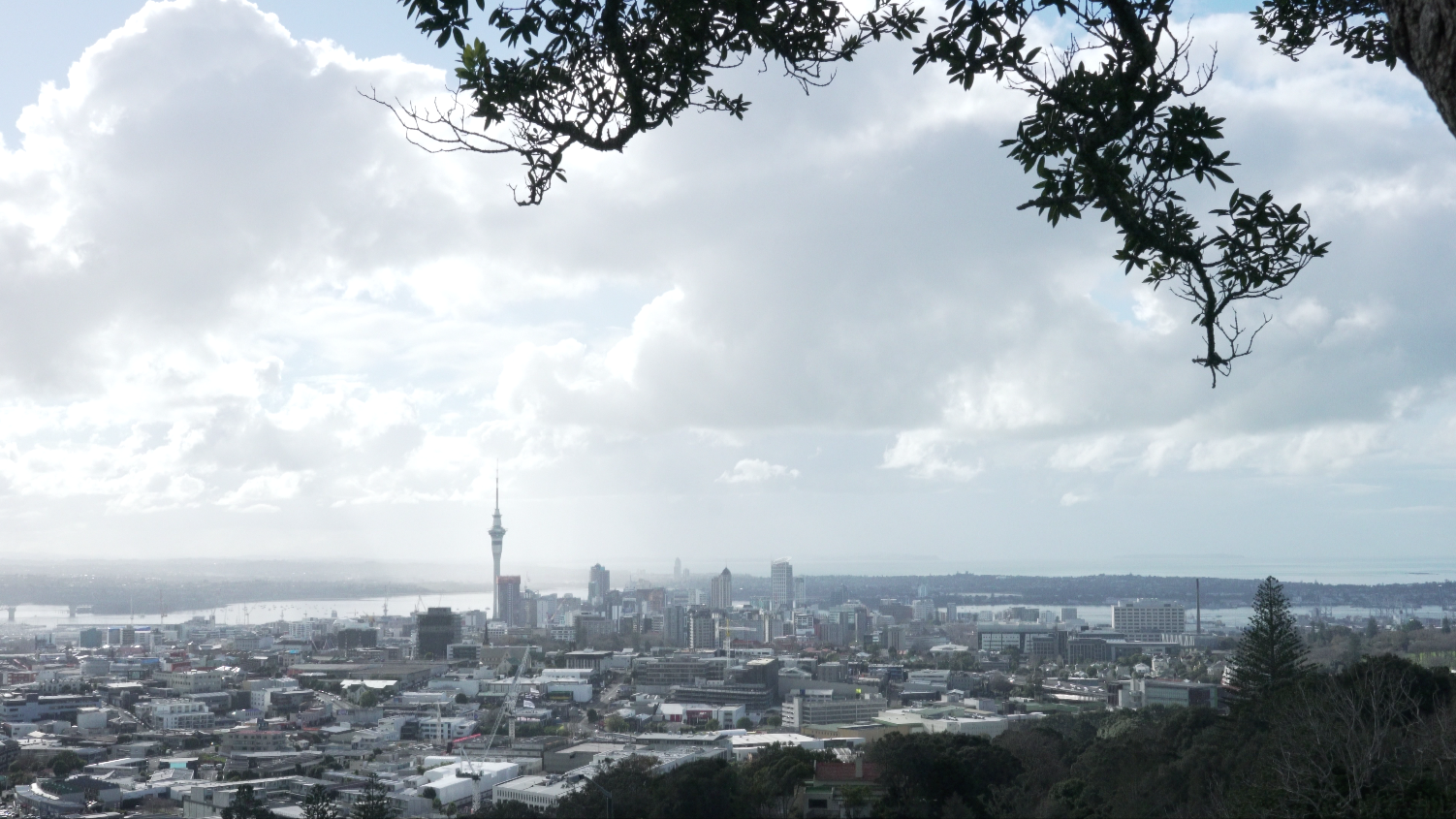 ... Auckland City in full flight - (different shots outside schools, halls, churches to mirror the music, then...)