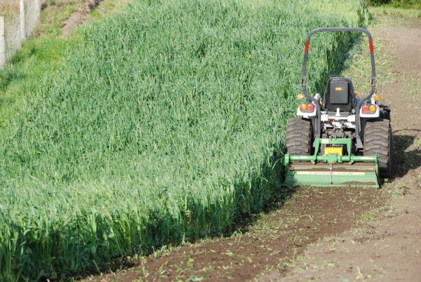 Incorporating the Winter Cover Crops into the soil - Sept 2015