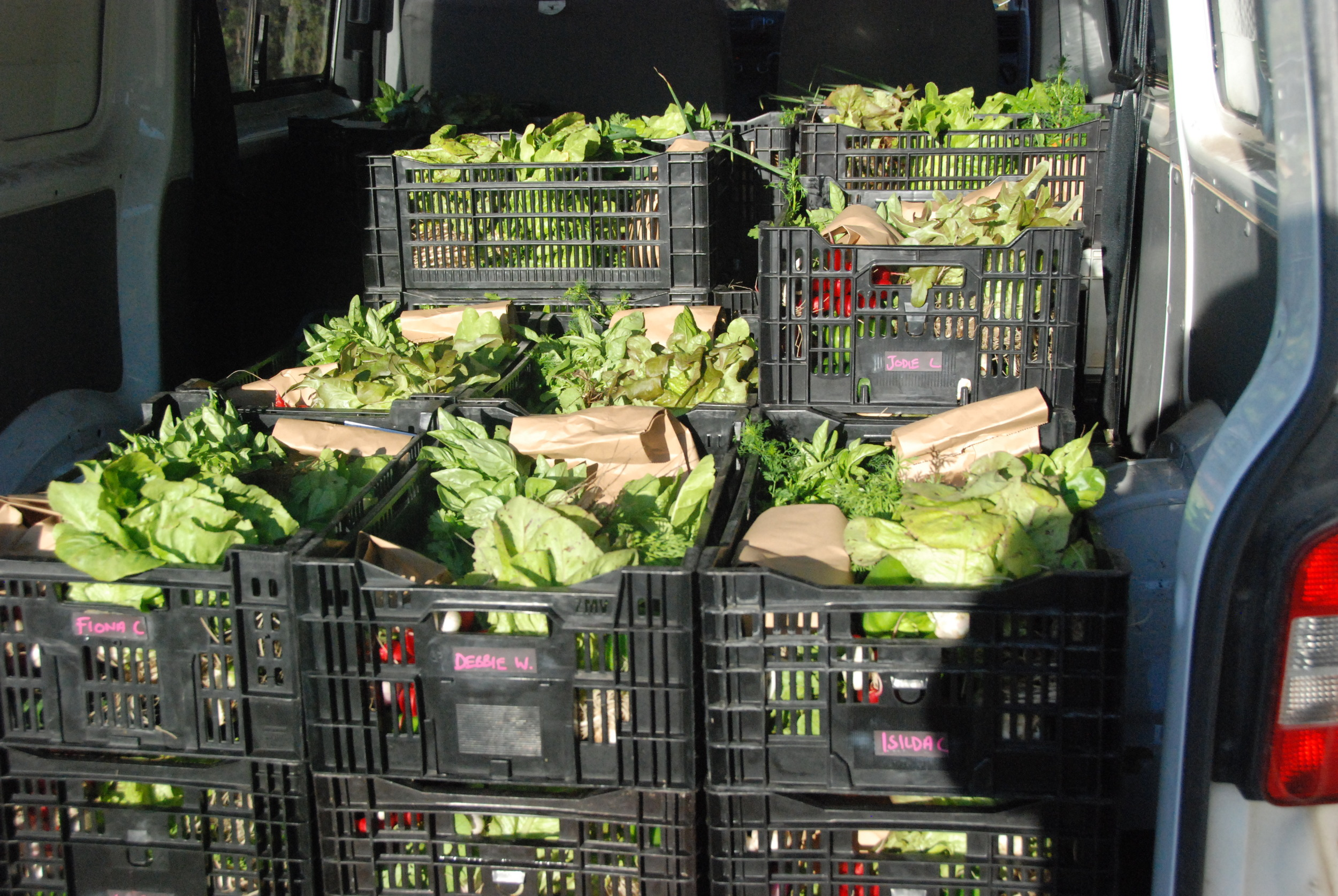 Van loaded for wednesday deliveries...from Mt Eliza to balnarring to portsea