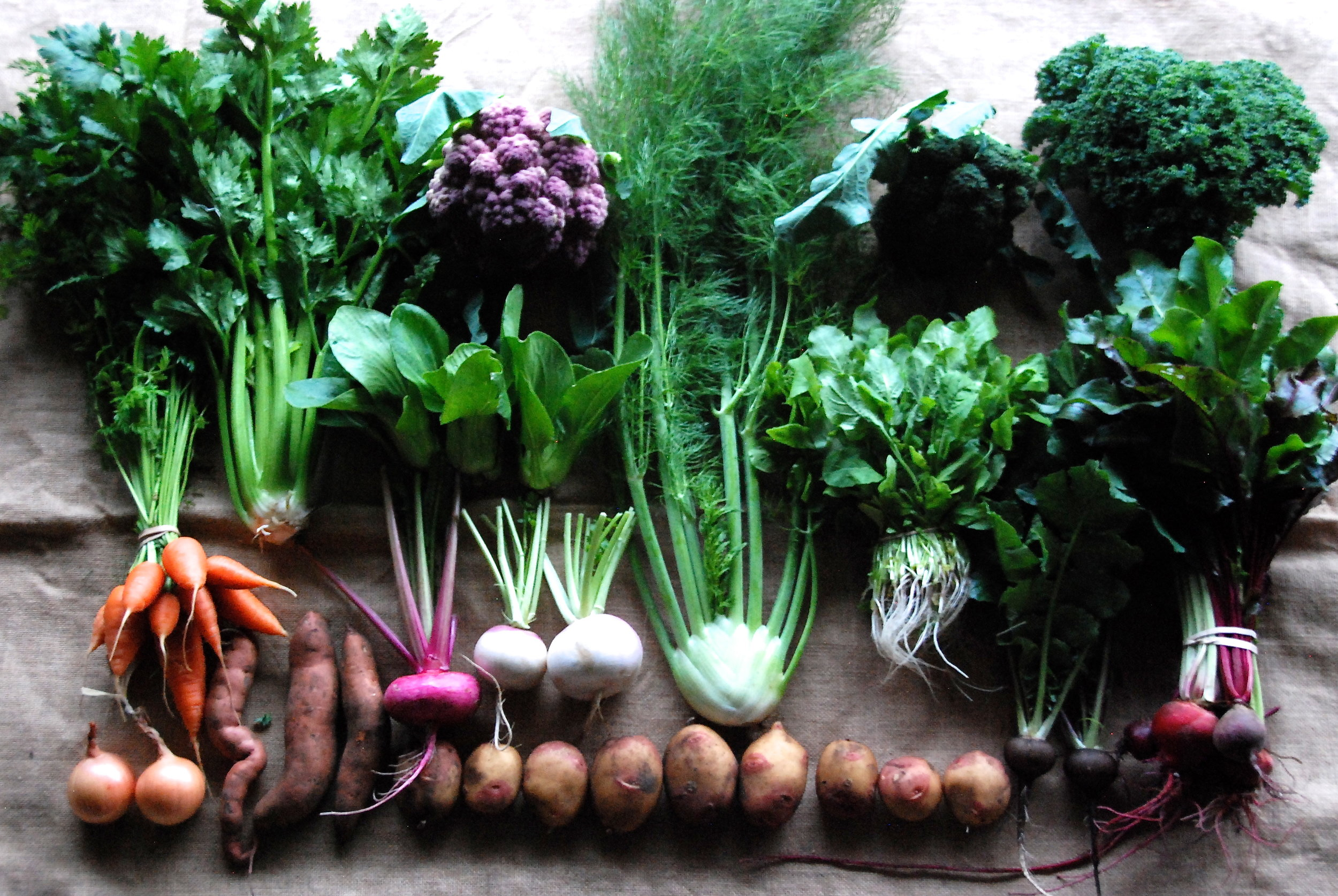 A randomly selected CSA share.