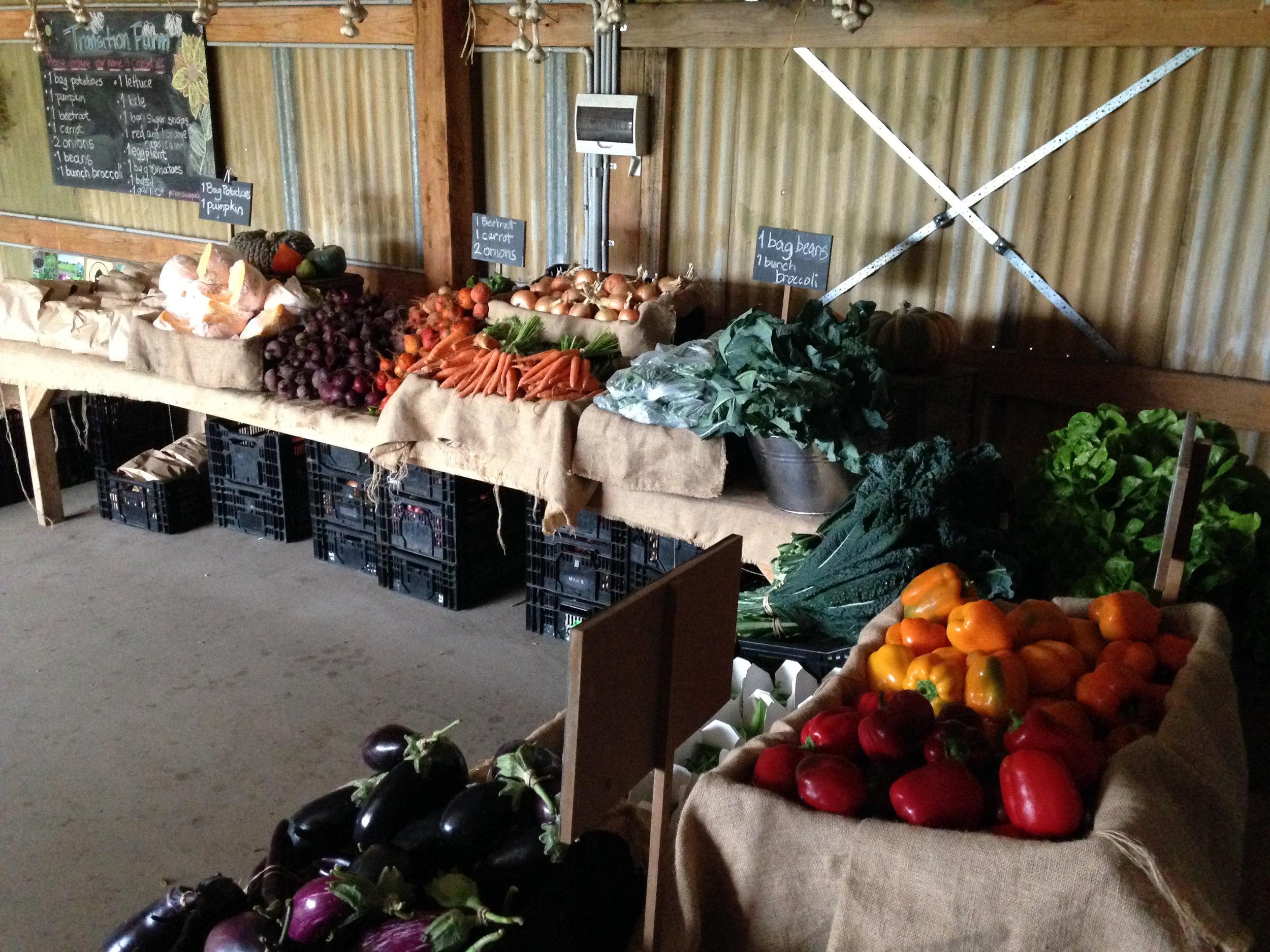Market style farm pick up at transition farm