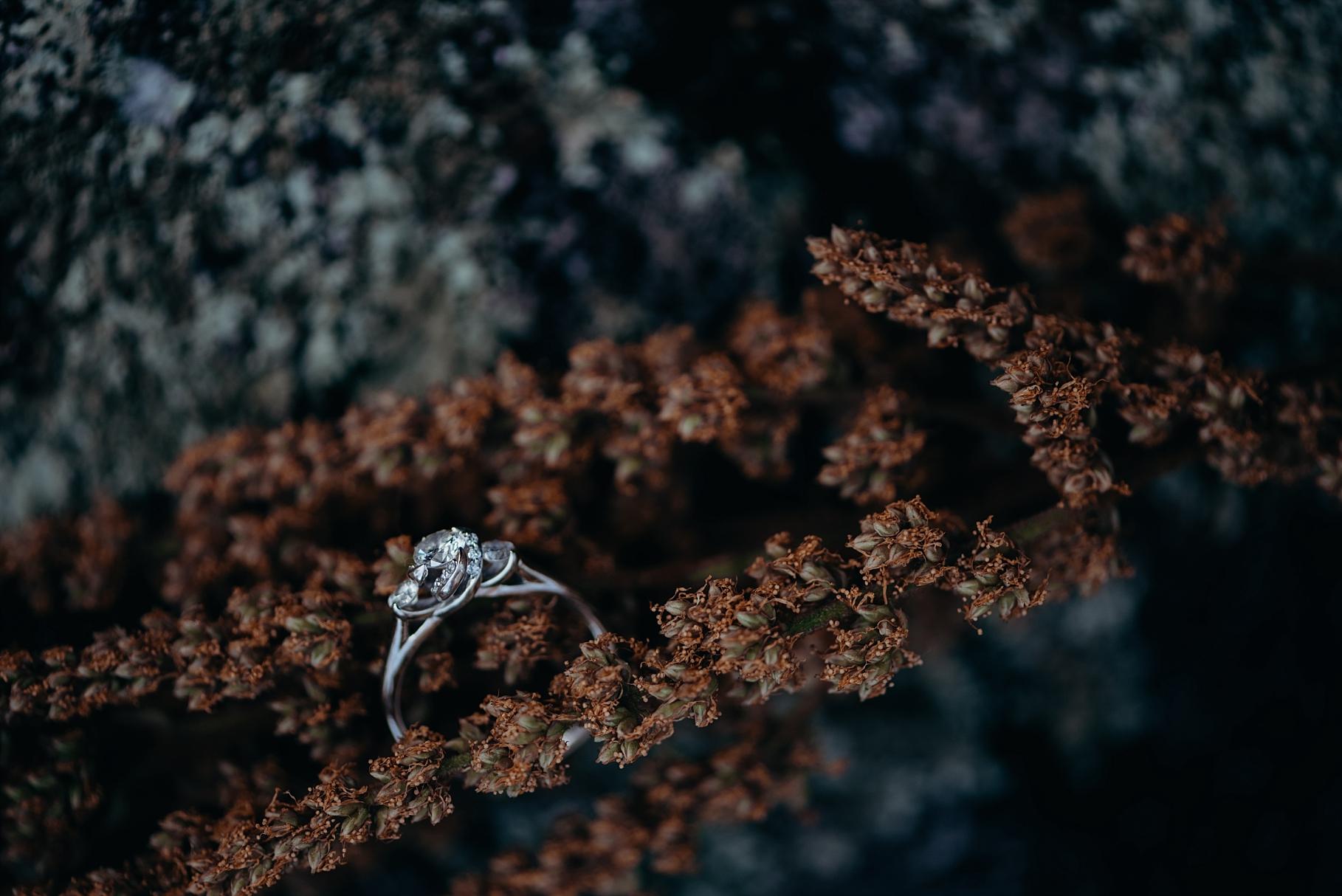 Engagement Ring Ottawa Photographer