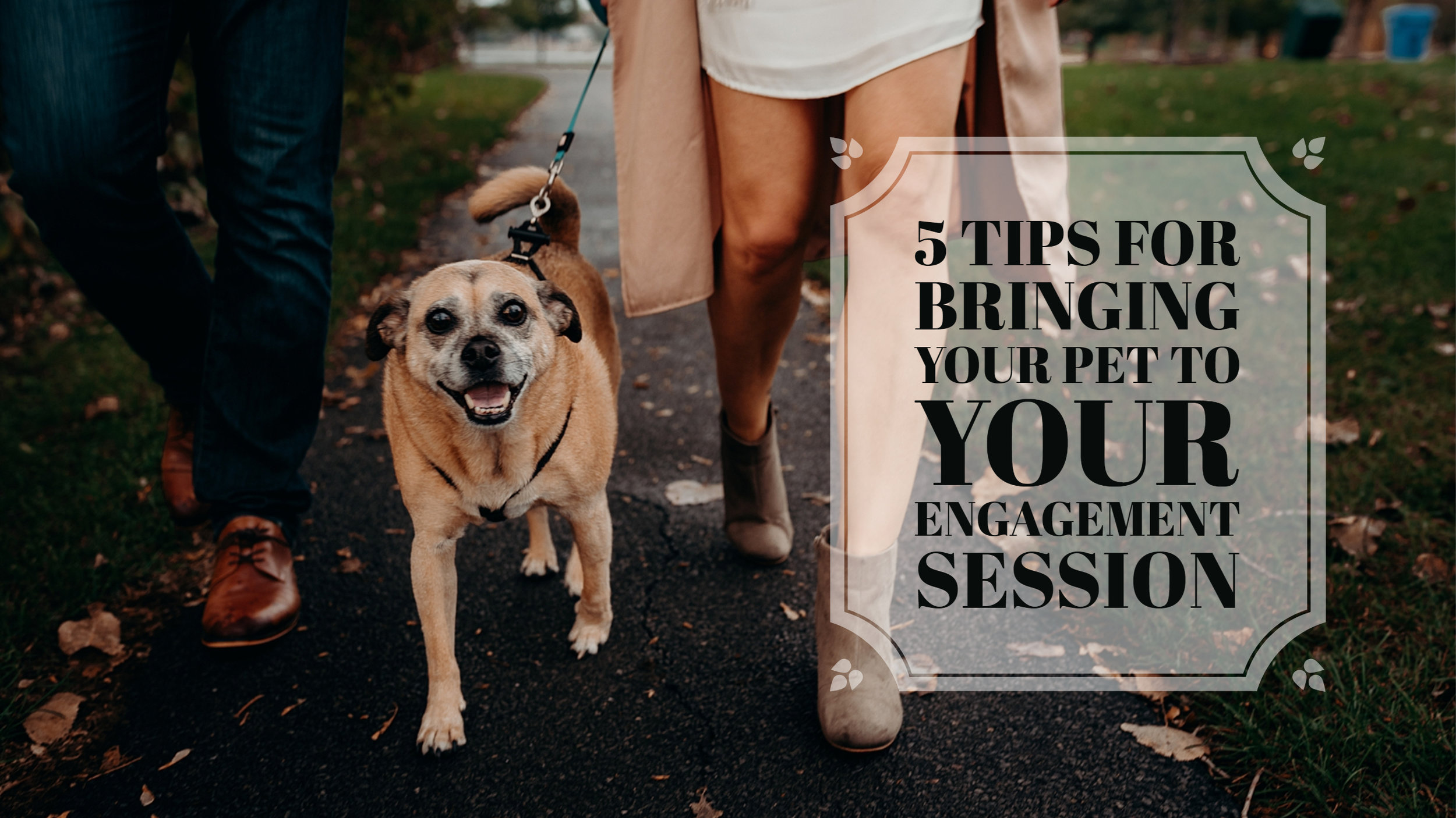 5 Tips for bringing your pet to your engagement session 15